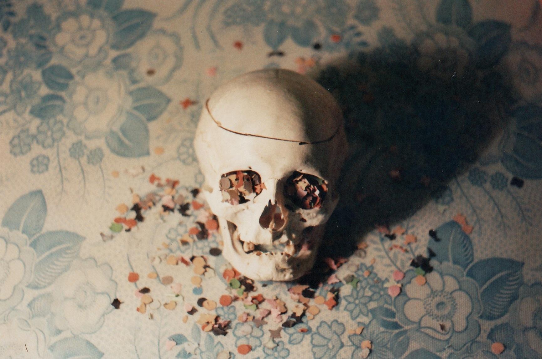 Hintergrundbilder : Brille, Knochen, Schädel, Tod, Leben, 35MM ...