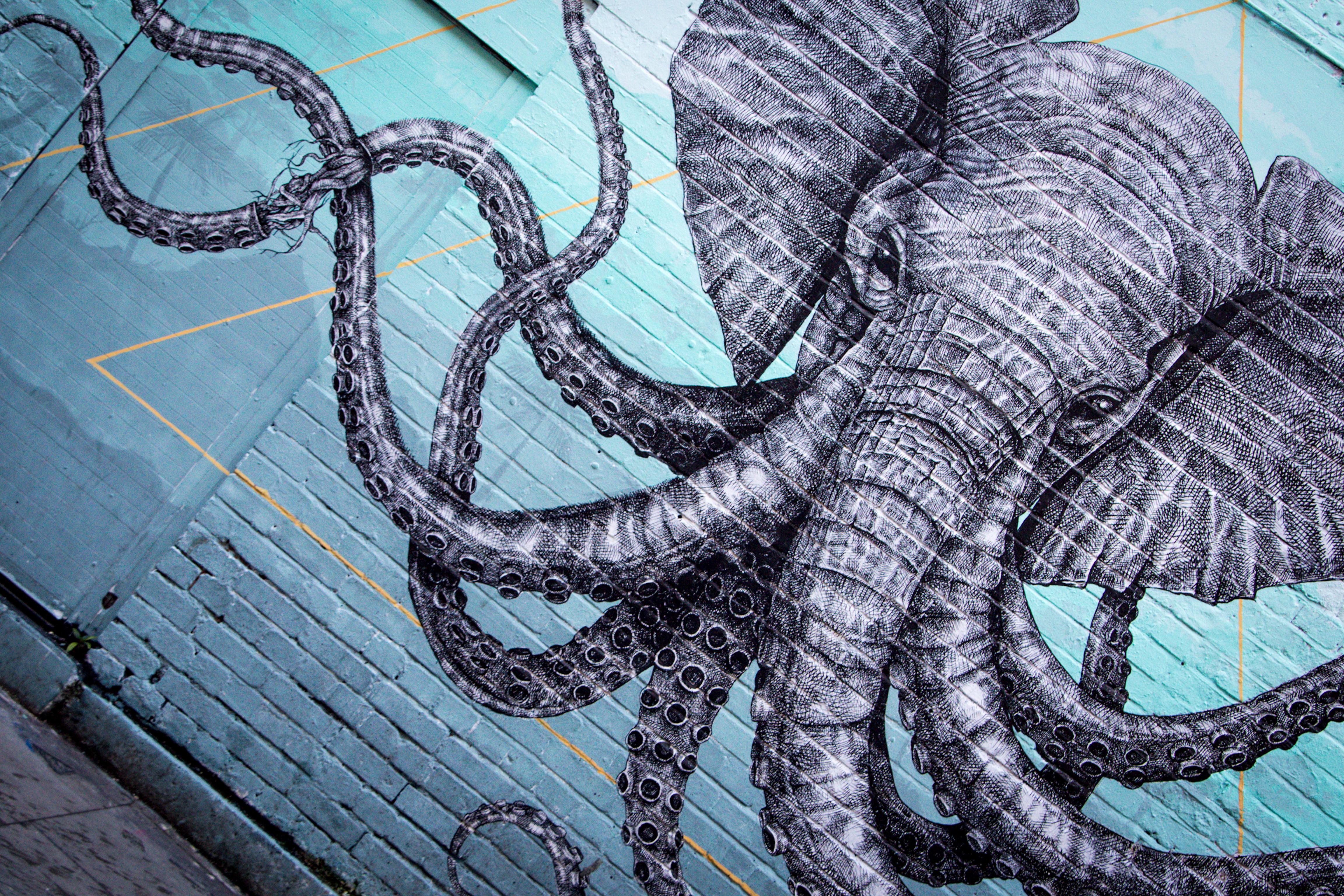 Masaüstü Grafik Yeşil Streetartist Dokunaçlar Hayvanlar