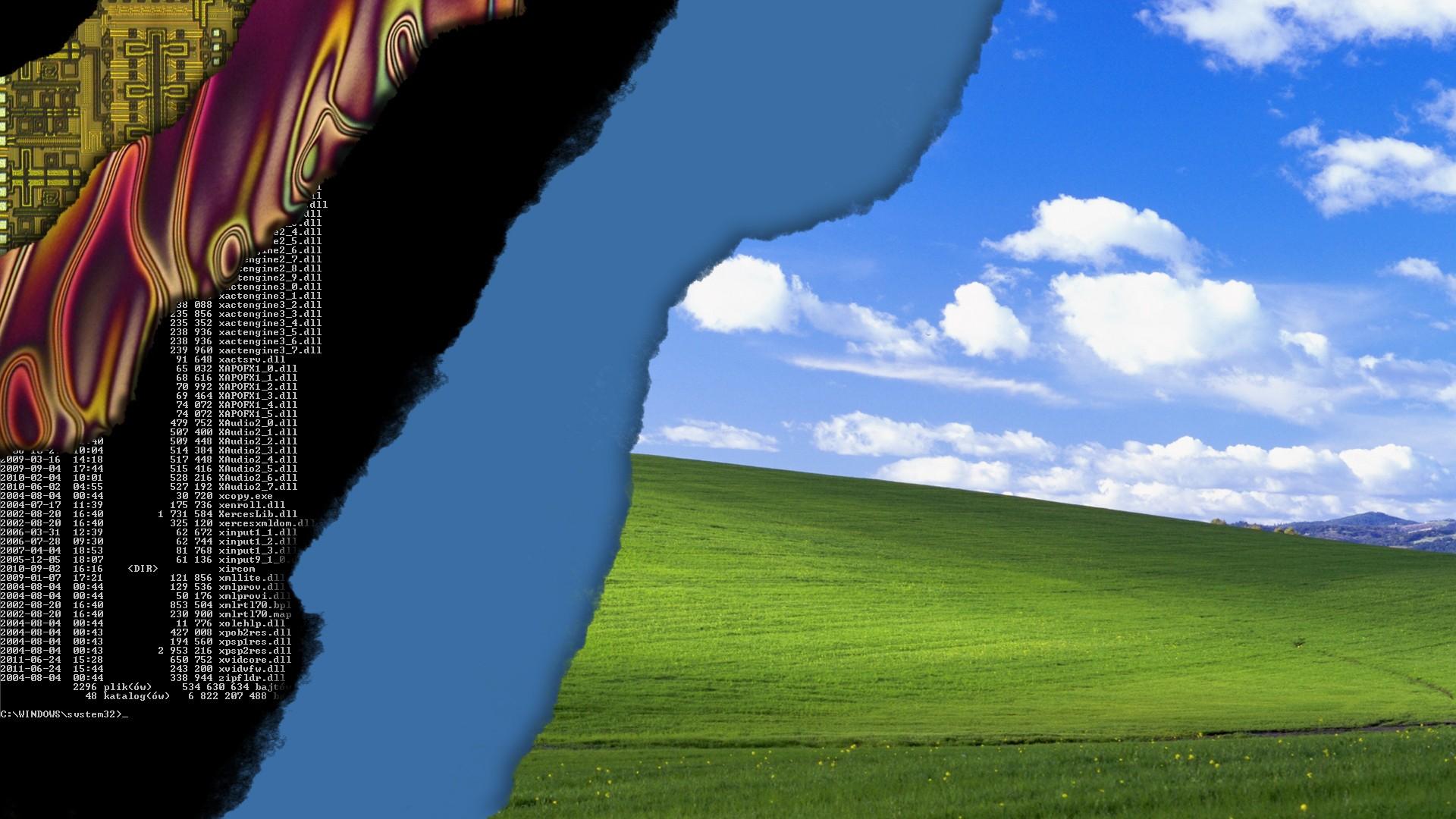 デスクトップ壁紙 空 風 技術 Windows Xp 草原 プレーン 生態