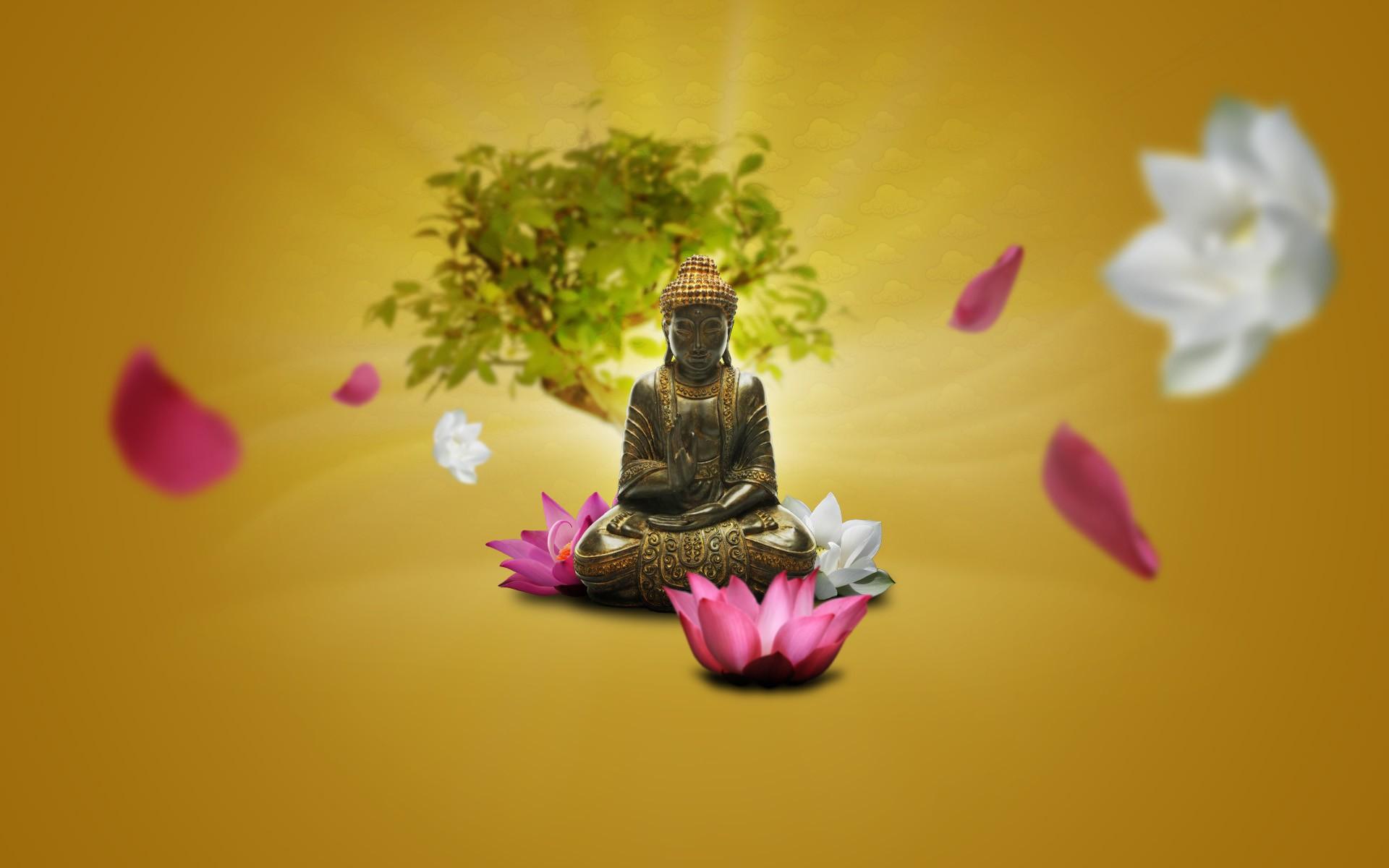 Green Yellow Pink Lotus Flowers Meditation Buddha Zen ART Color Flower Plant Flora Petal Macro Photography