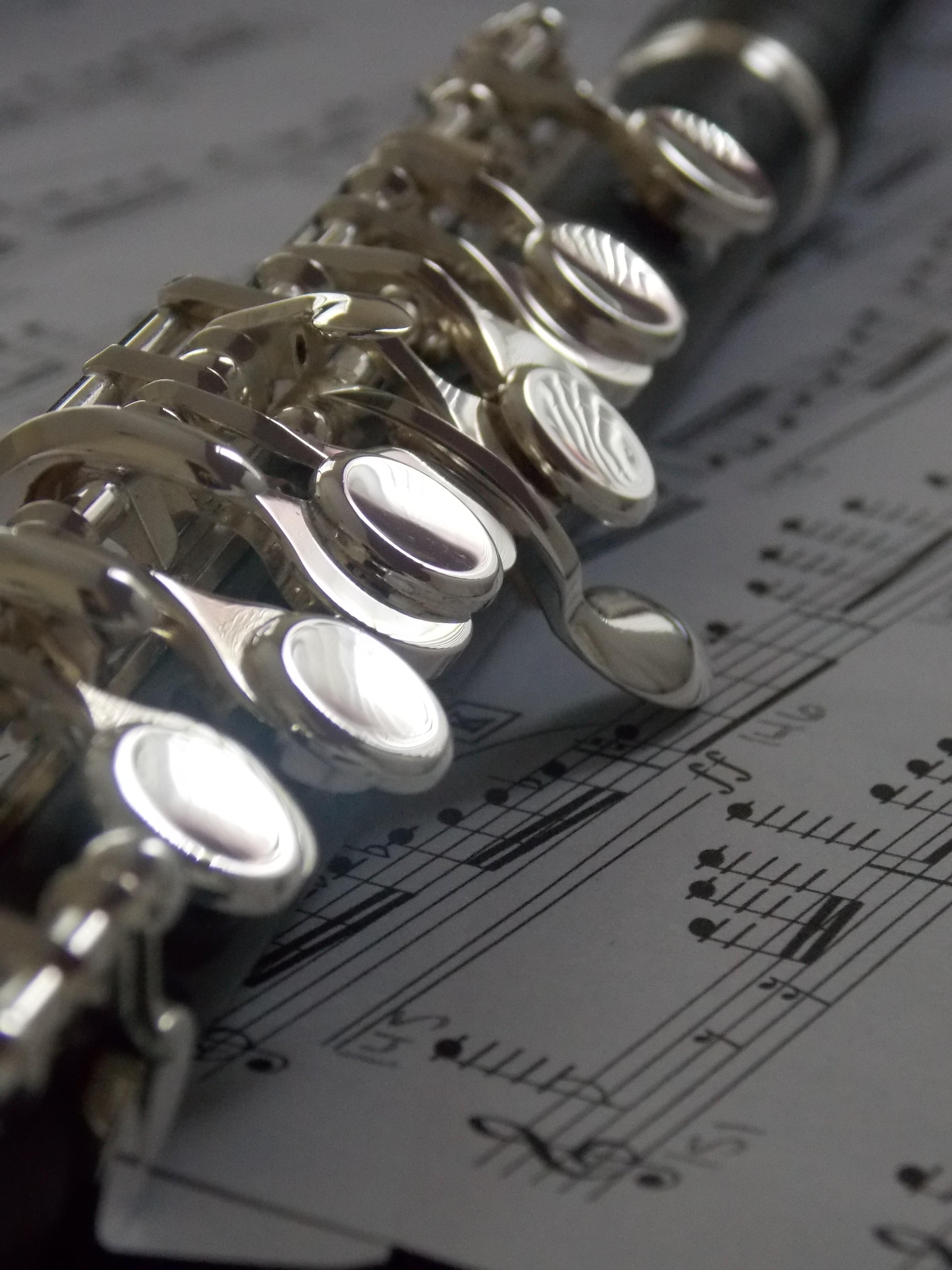 デスクトップ壁紙 ギター 音楽 音符 銀 ピッコロ フルート