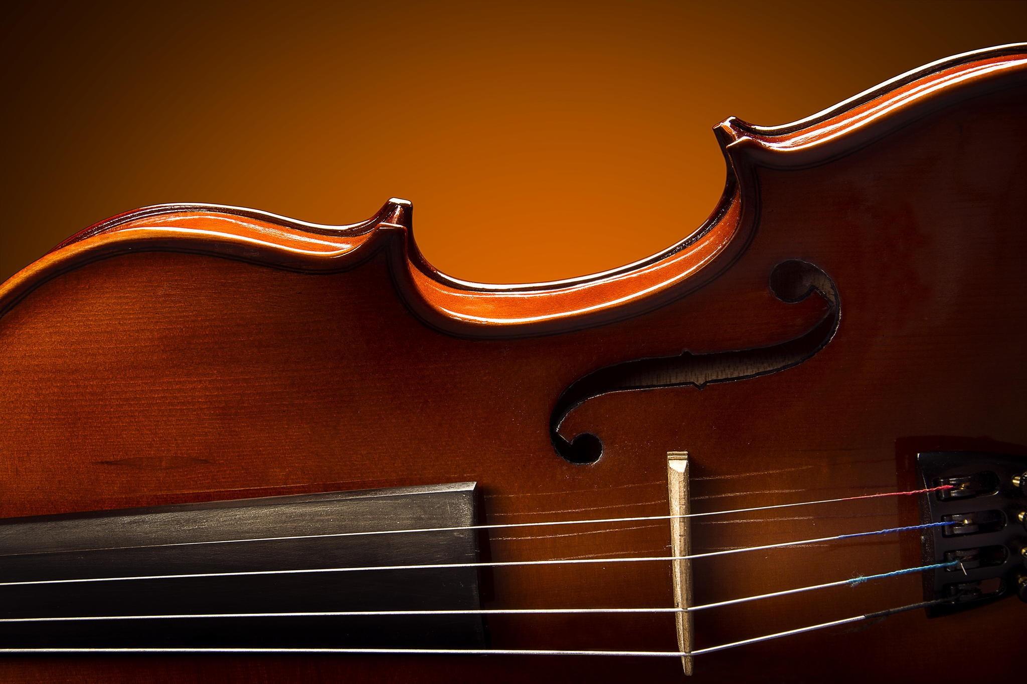 Wallpaper Musical Instrument Cello Viola Viol Plucked