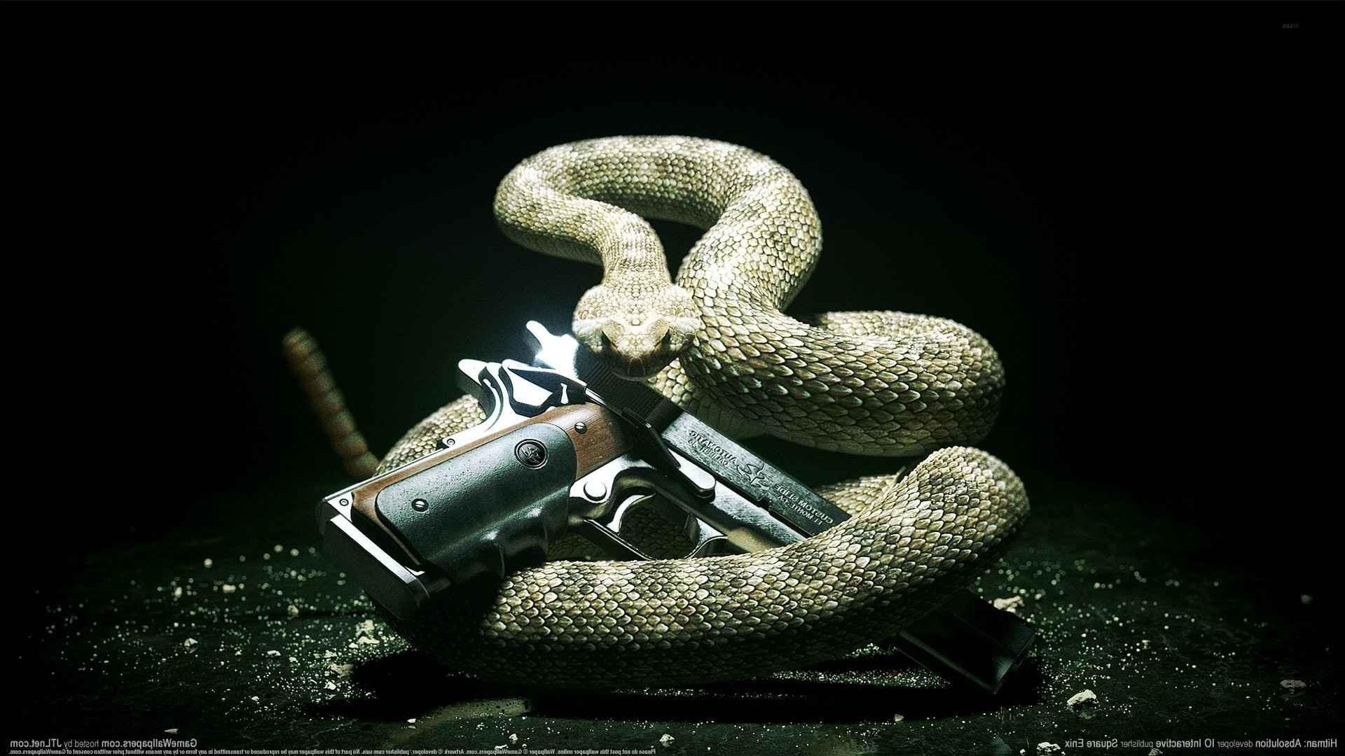 Wallpaper Gun Snake Pc Gaming Serpent Hitman Absolution