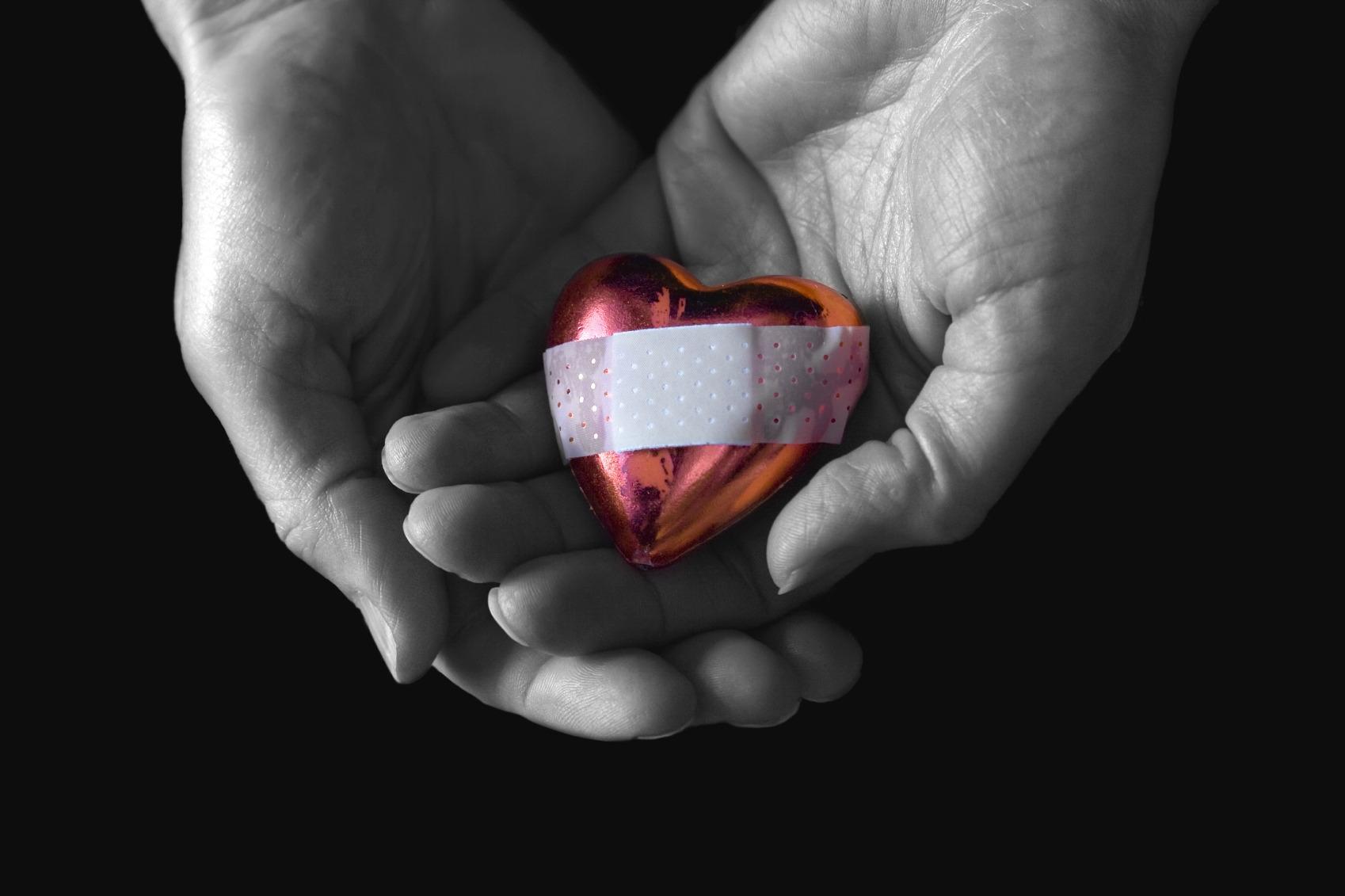 фото картинка сердце в ладонях камерах