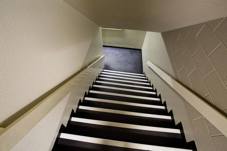 картинки лестница вверх и вниз то