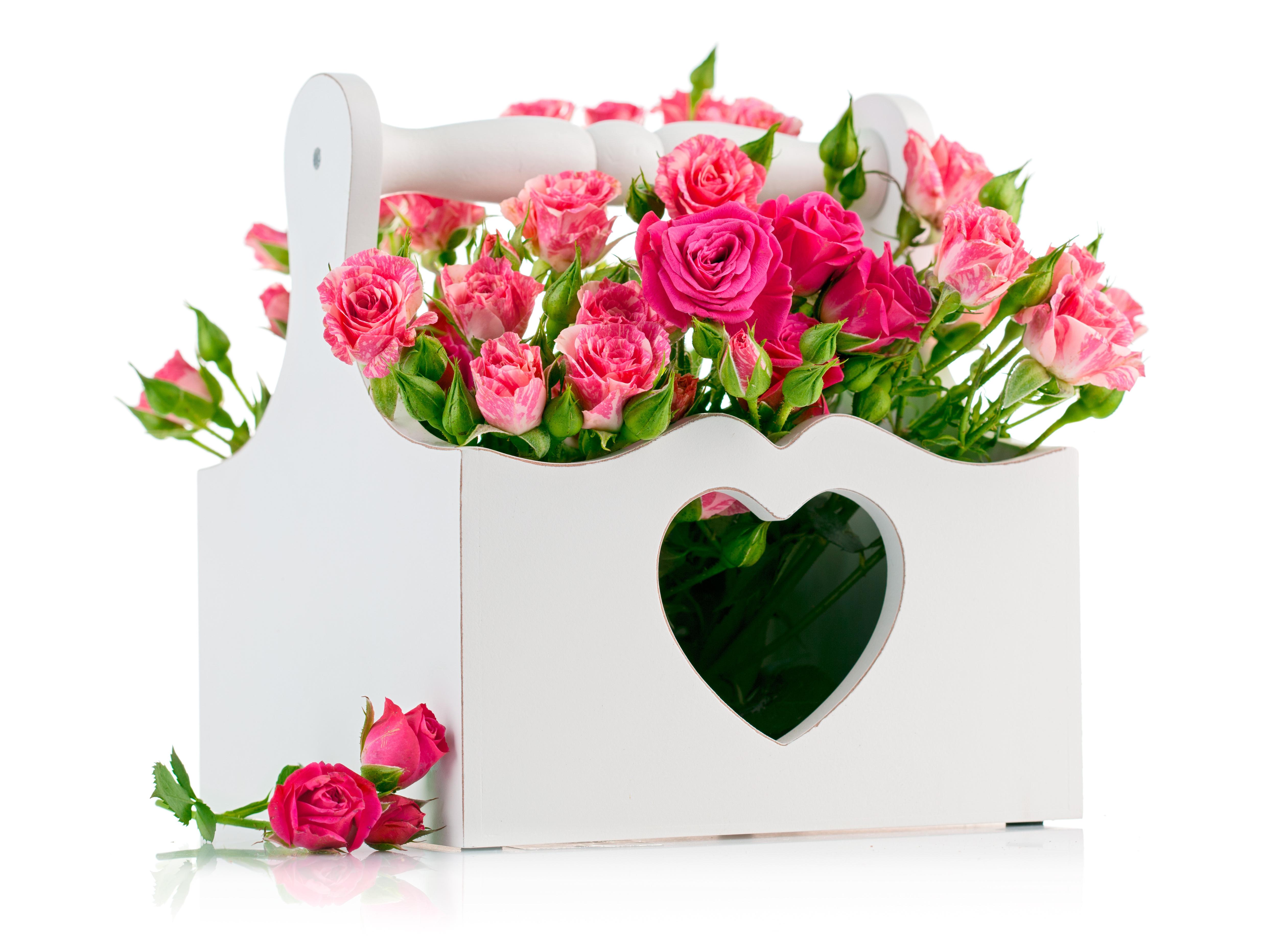 Papel De Parede Coracao Cestas Rosa Rosa Unico Buques Flor