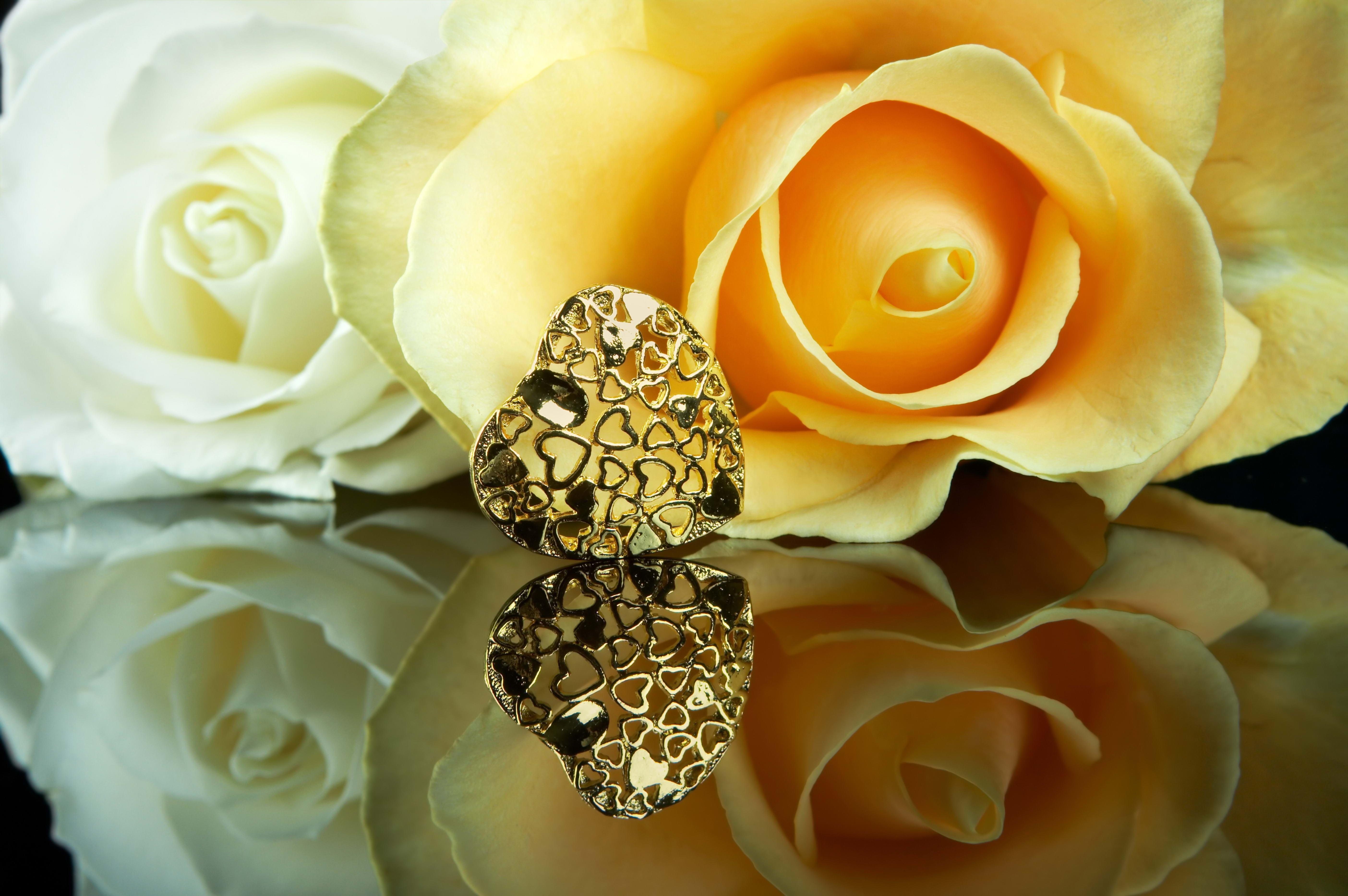 описать бриллианты и розы фото прорабатывал каждое движение