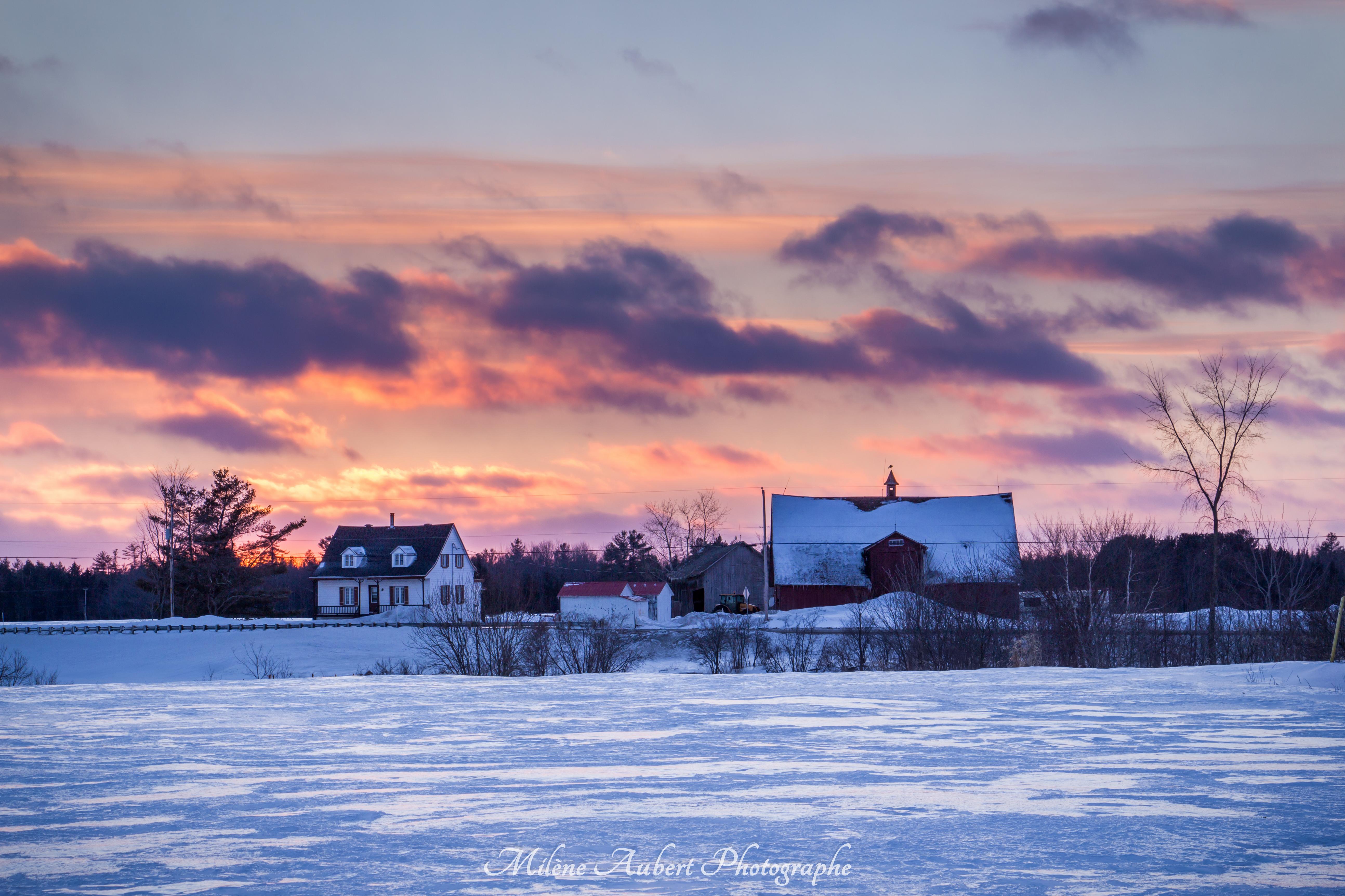 Wallpaper Hiver Winter Sunset Coucherdesoleil Color