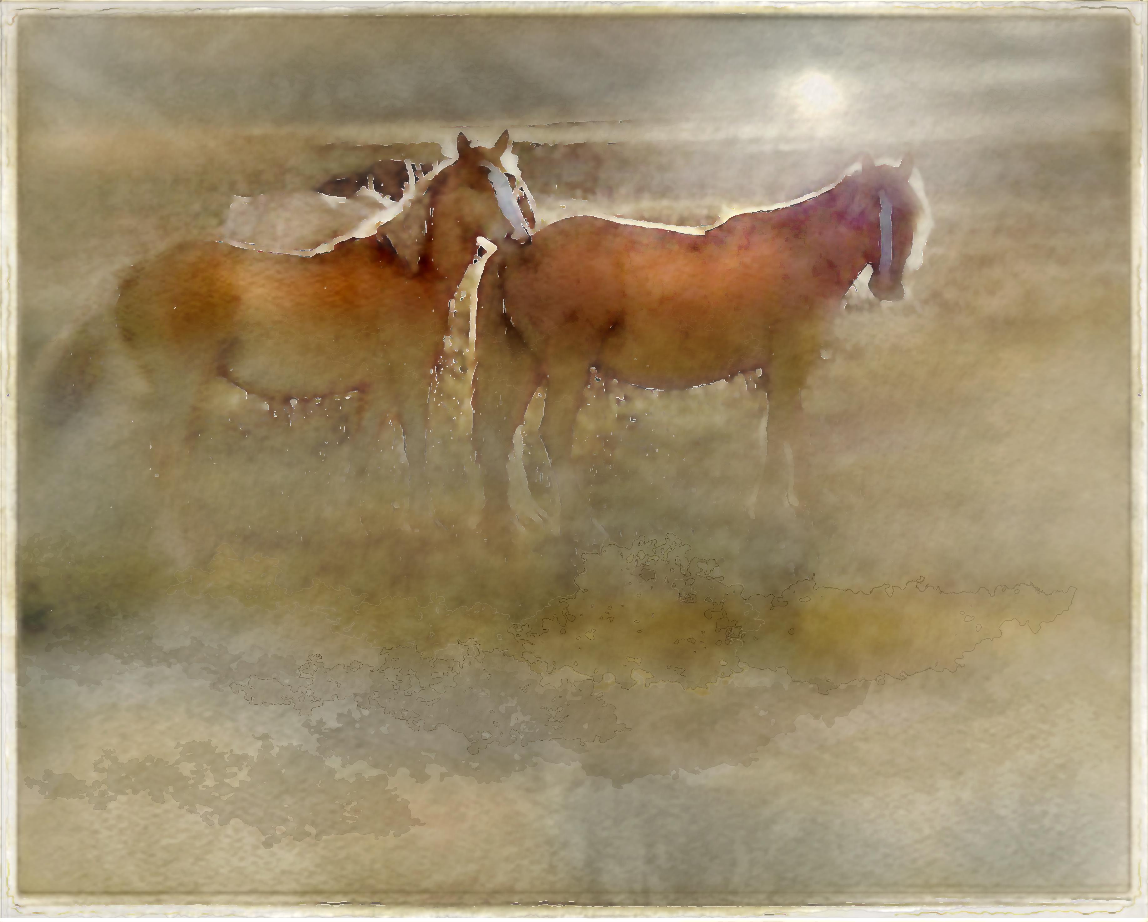 Masaüstü Atlar Sisli Dijital Photoshop Manipüle Edilmiş