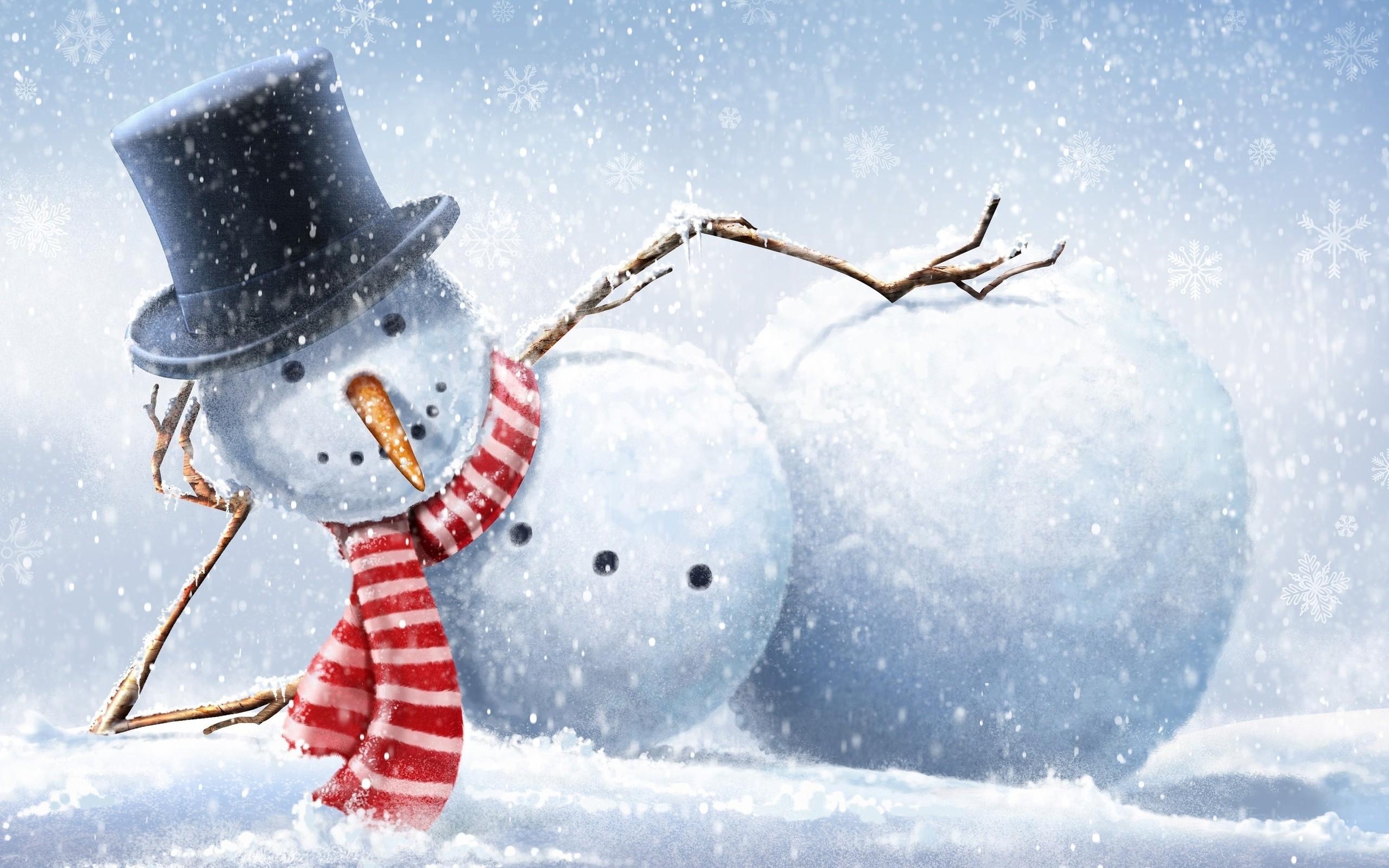 デスクトップ壁紙 ユーモア 冬 雪だるま クリスマス 北極 新年