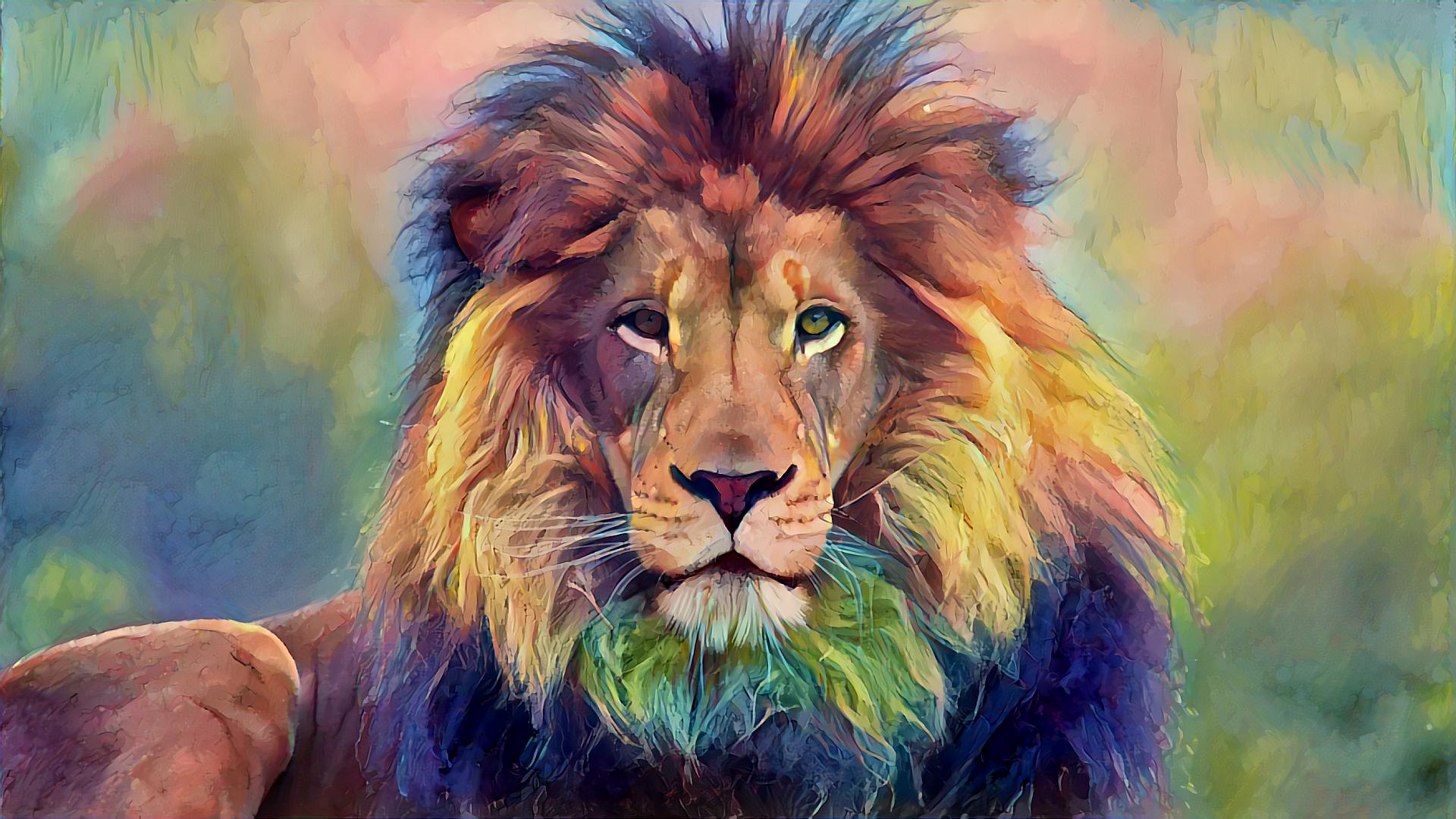 Sfondi illustrazione animali leone natura grandi for Sfondi leone