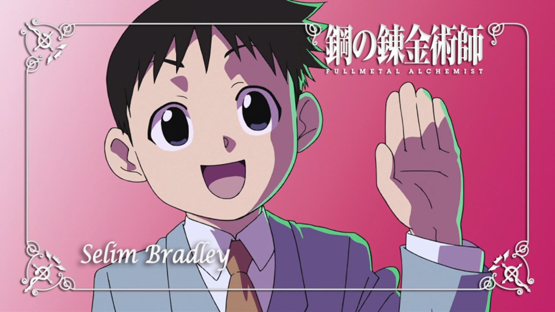 Fond d'écran : illustration, Anime, dessin animé, Fullmetal Alchemist Brotherhood, Homunculus ...
