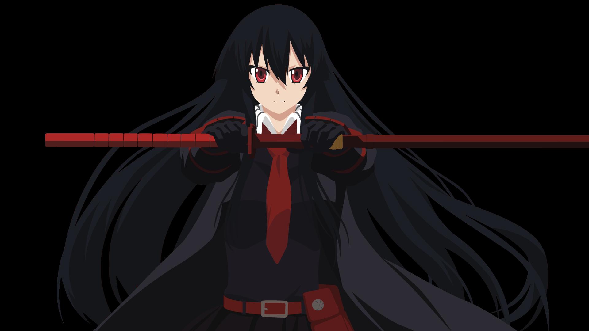 Fondos De Pantalla : Ilustración, Anime, Katana, Akame Ga