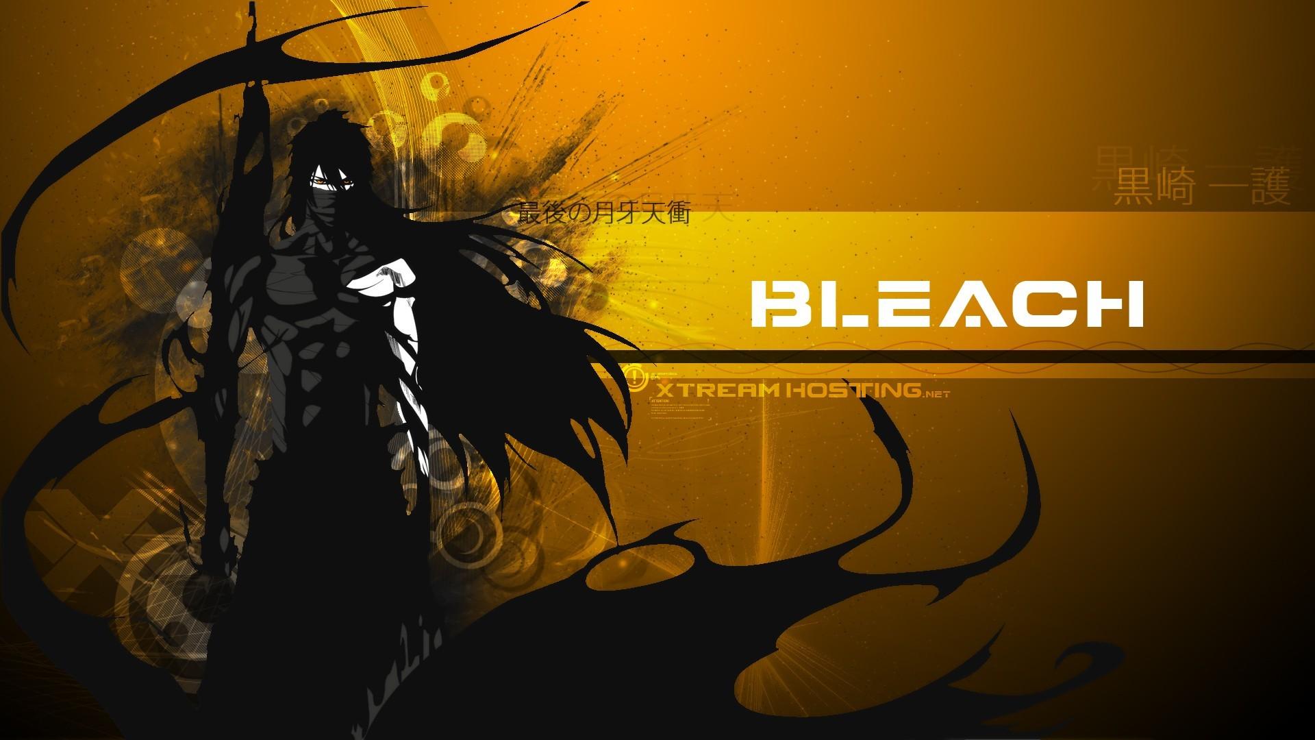 Bleach Kurosaki Ichigo Mugetsu