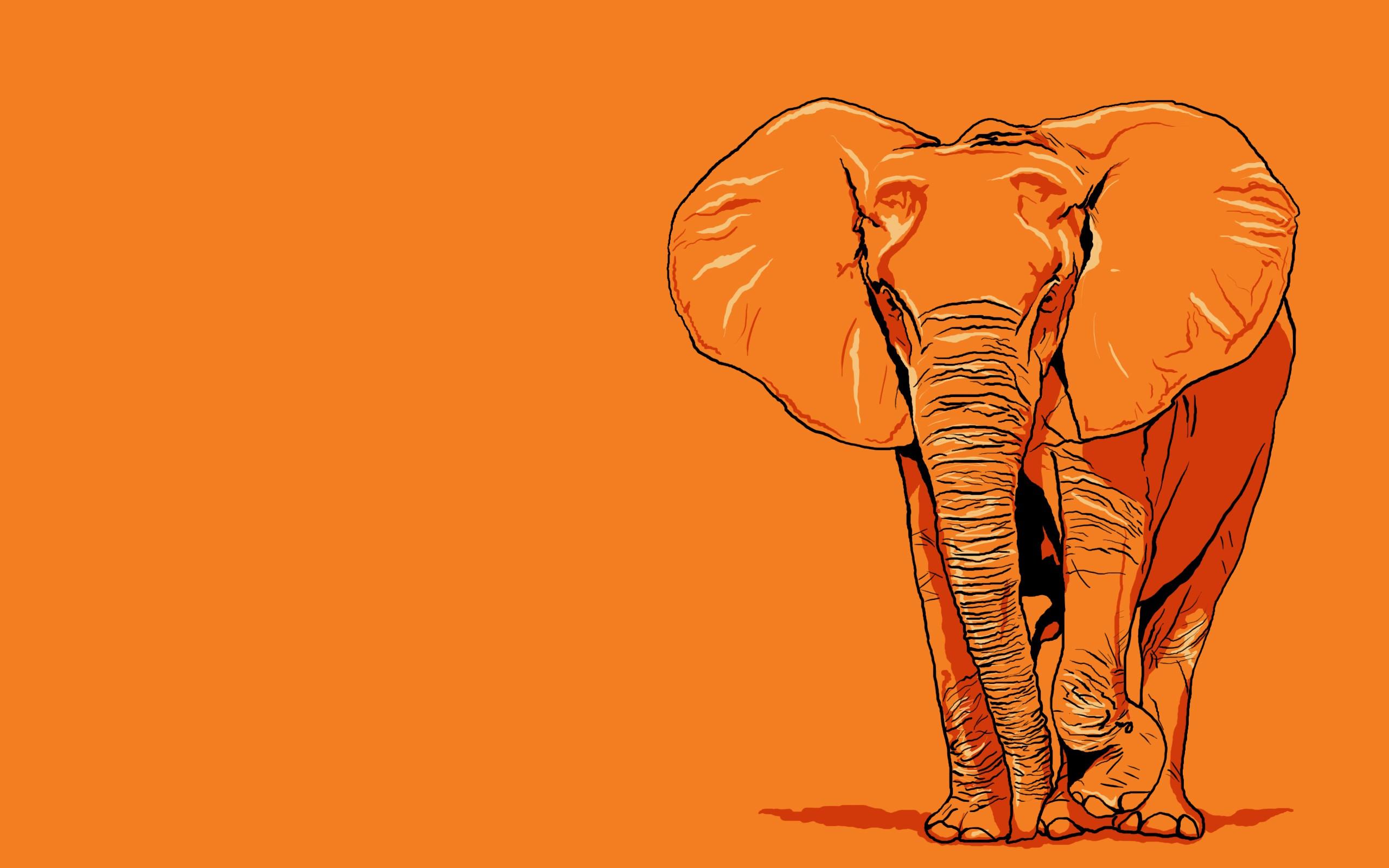 Download Wallpaper Cartoon Elephant - illustration-cartoon-elephant-mammal-vertebrate-savanna-elephants-and-mammoths-185448  Picture_503425  .jpg
