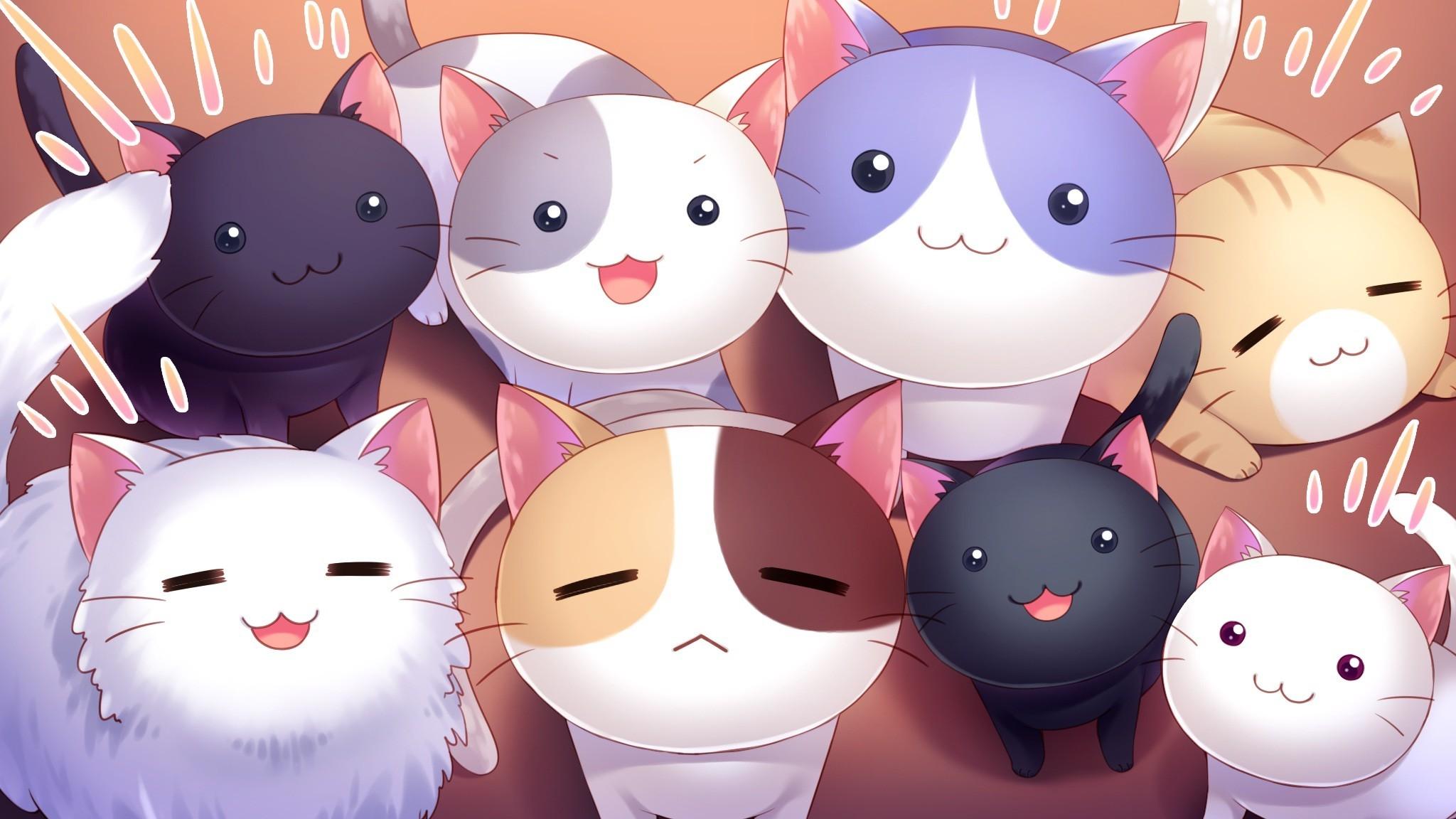 Sfondi illustrazione gatto anime cartone animato