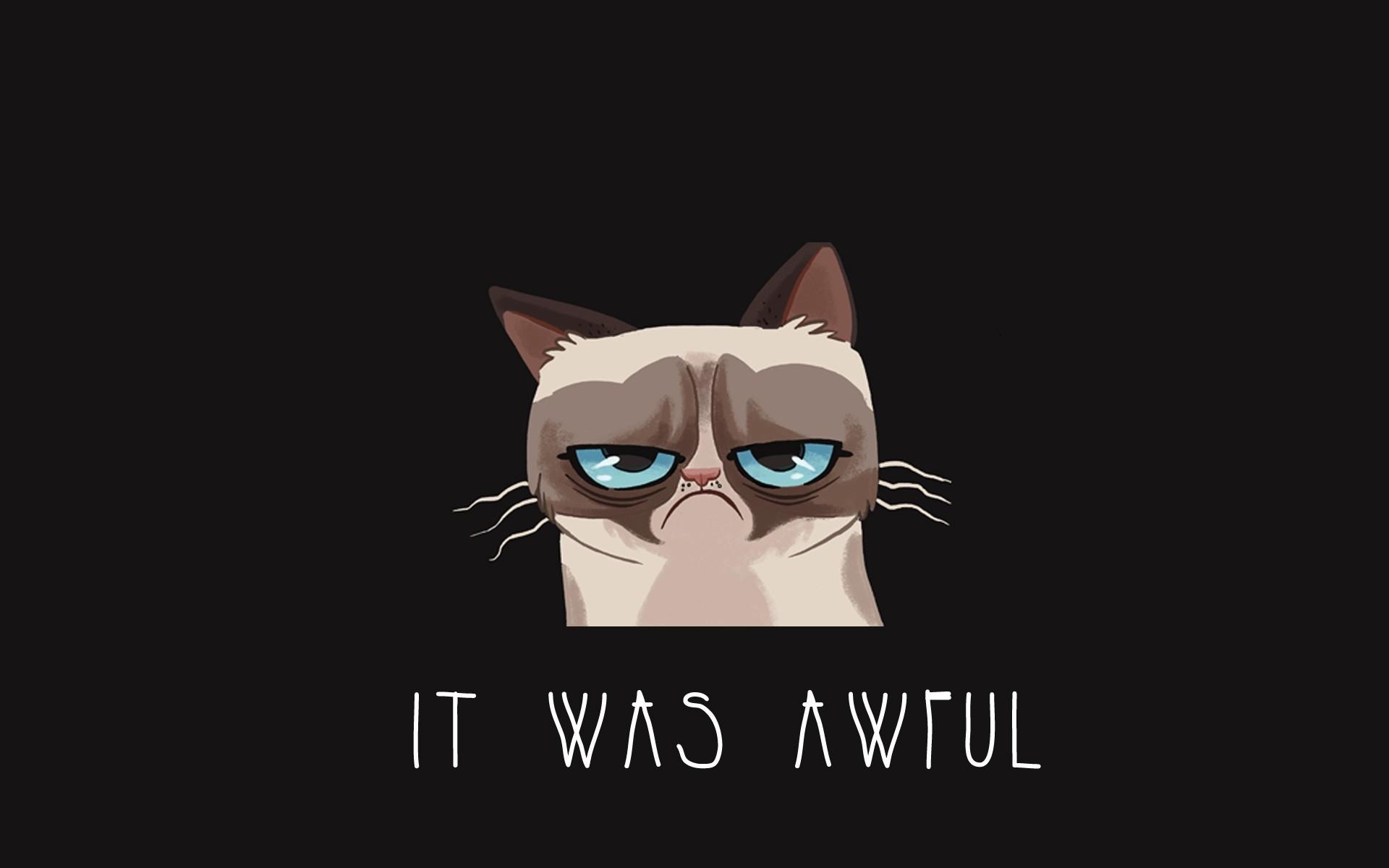 Free Funny Screensavers 2: Fondos De Pantalla : Ilustración, Gato, Dibujos Animados