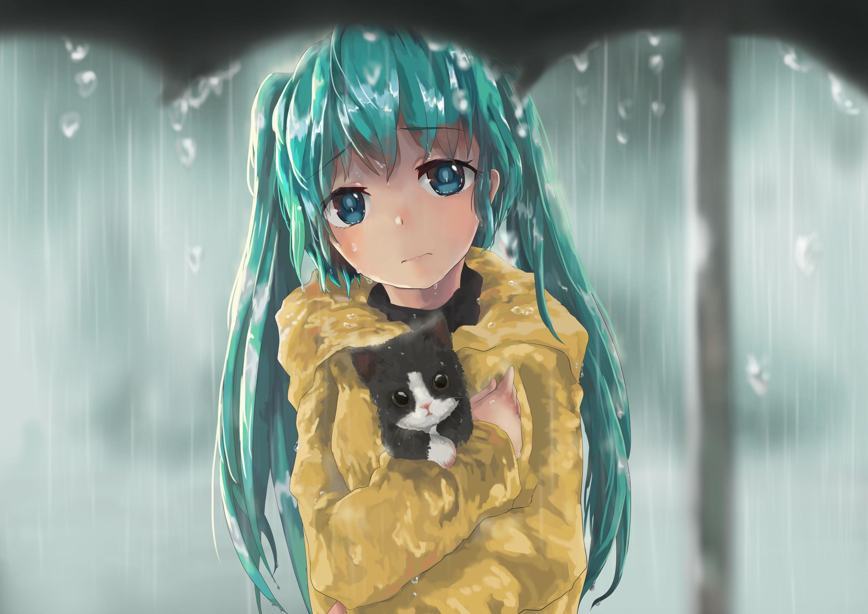 wallpaper   illustration  cat  long hair  anime girls  water  rain  blue  vocaloid  hatsune miku
