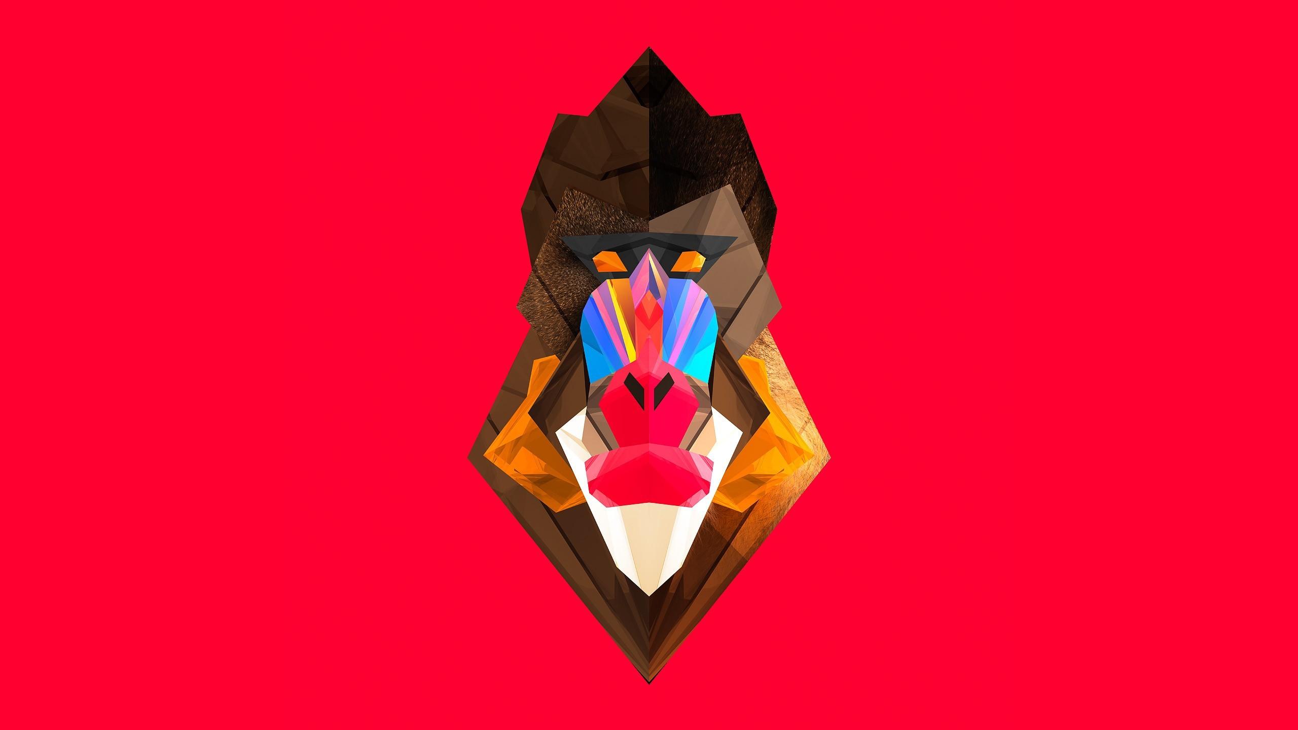 Illustration Digital Art Animals Red Artwork Facets Justin Maller Monkey Mandrill ART Organ