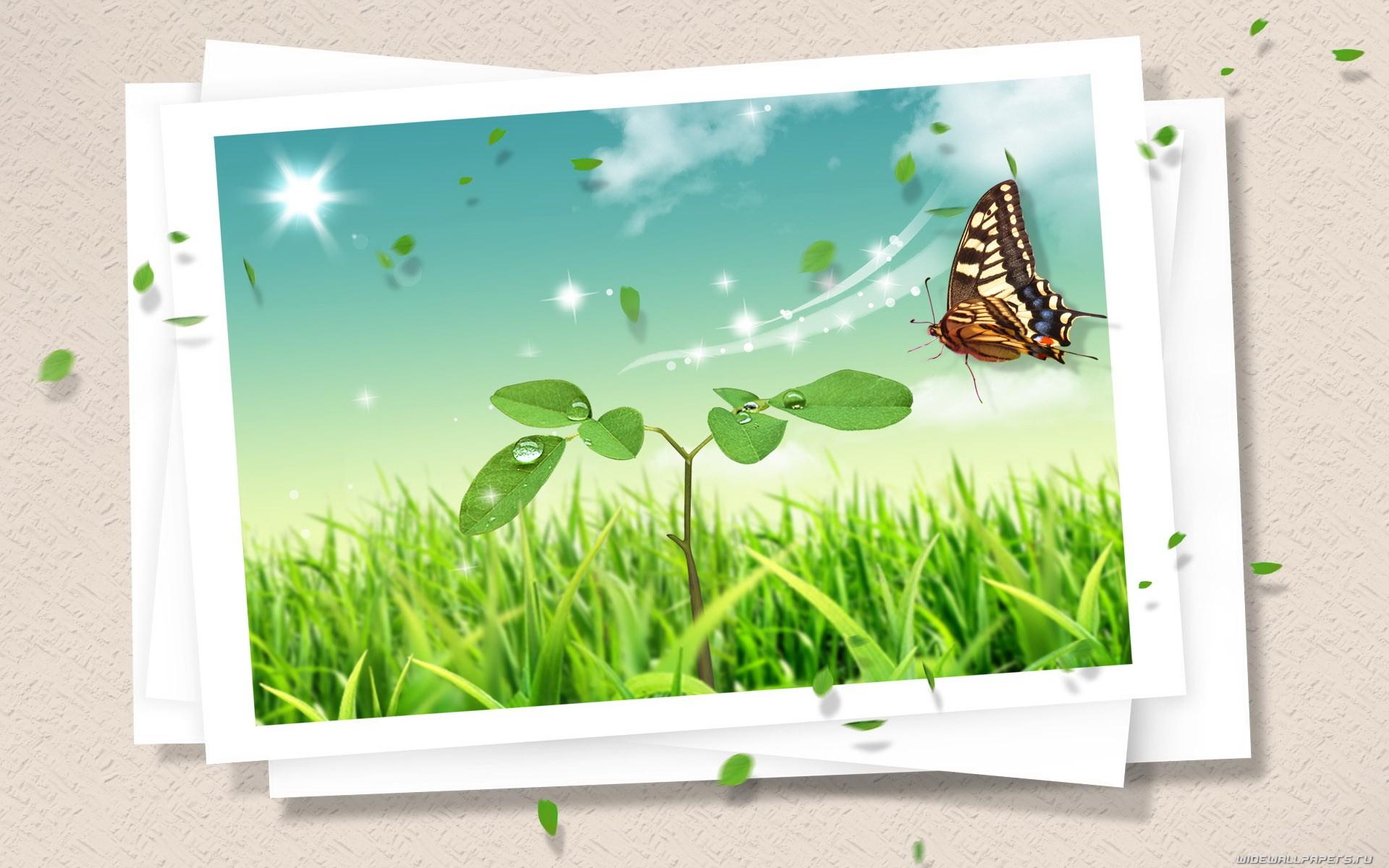 Fondos de pantalla : ilustración, arte digital, césped, mariposa ...