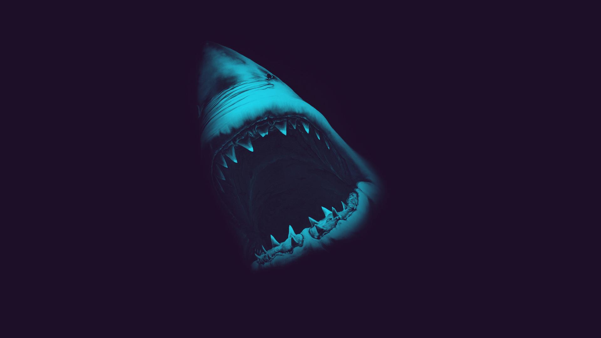 Скачать живые обои акула на рабочий стол