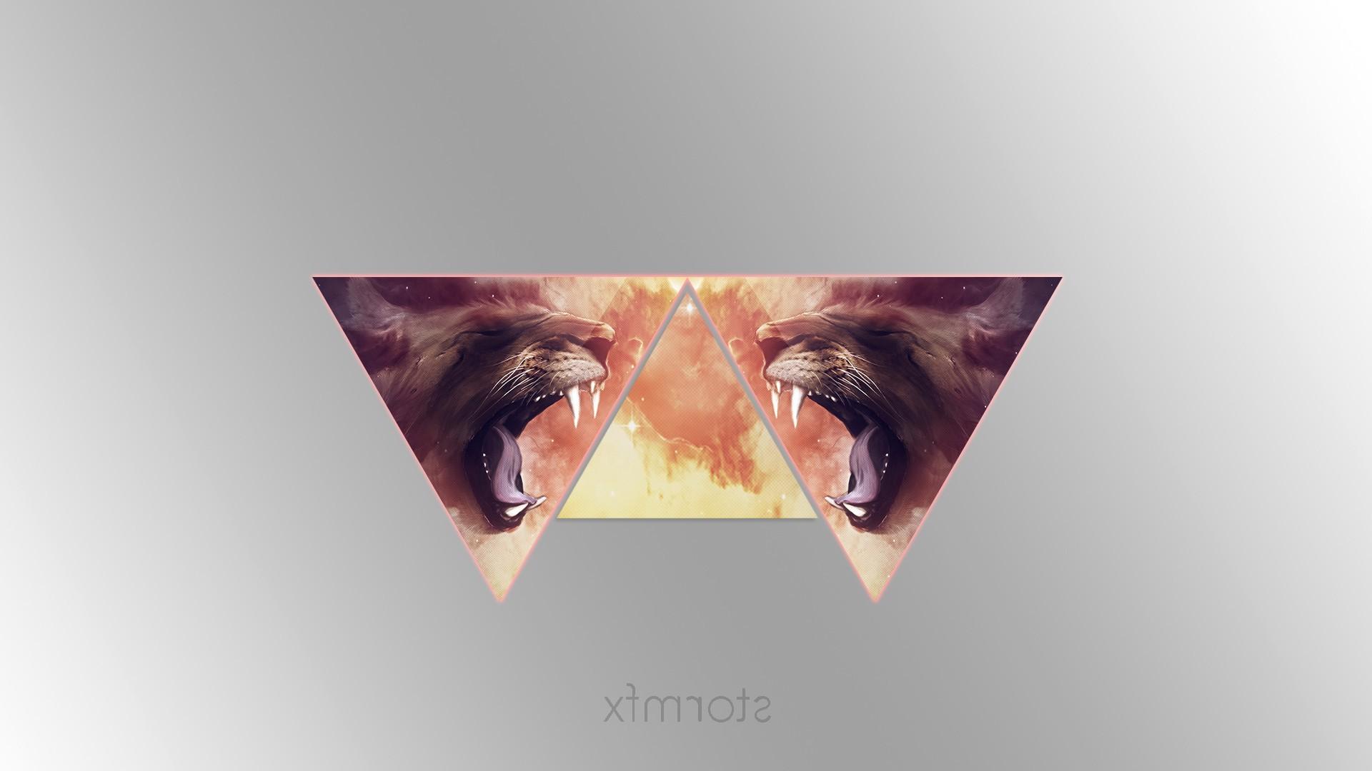 Illustration Galaxy Clouds Text Logo Lion Graphic Design Triangle Nose Brand Eye Advertising Sense 1920x1080 Px