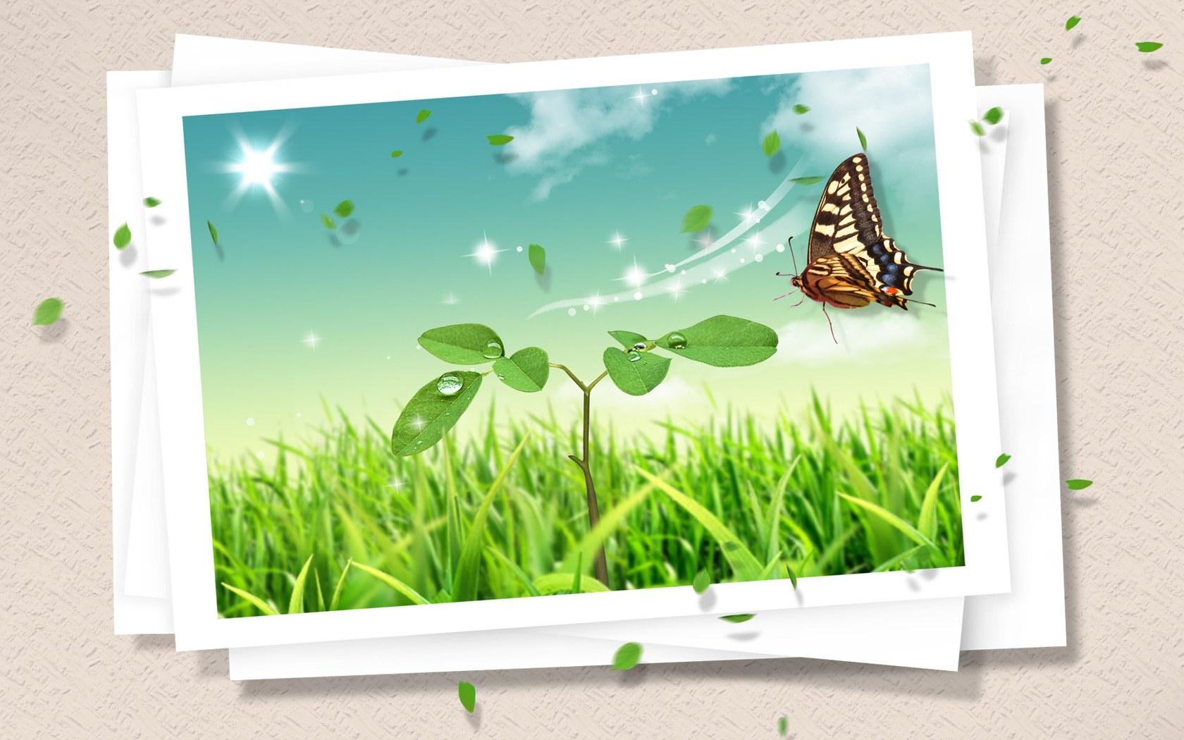 Hintergrundbilder : Illustration, Gras, Fotografie, Schmetterling ...