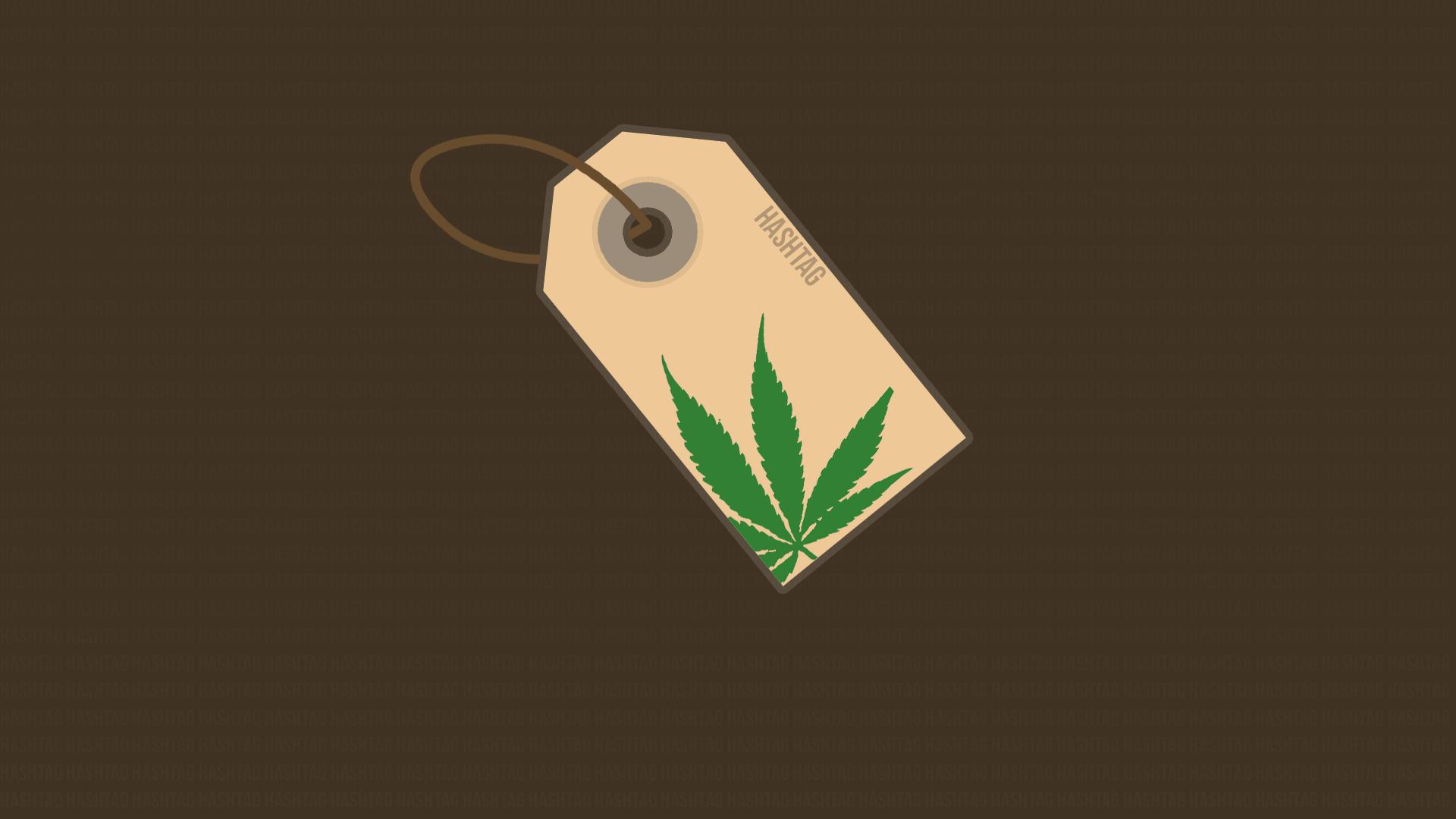 illustration logo cannabis hashtags leaf shape wing computer wallpaper font 170089