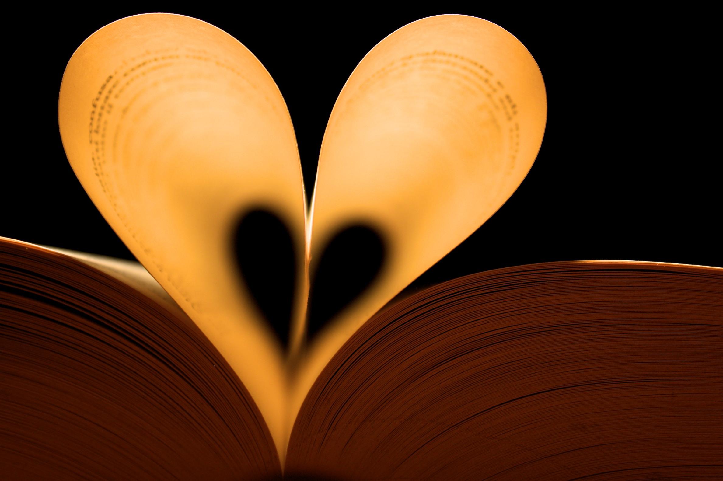 Fondos de pantalla : ilustración, amor, corazón, simetría, circulo ...