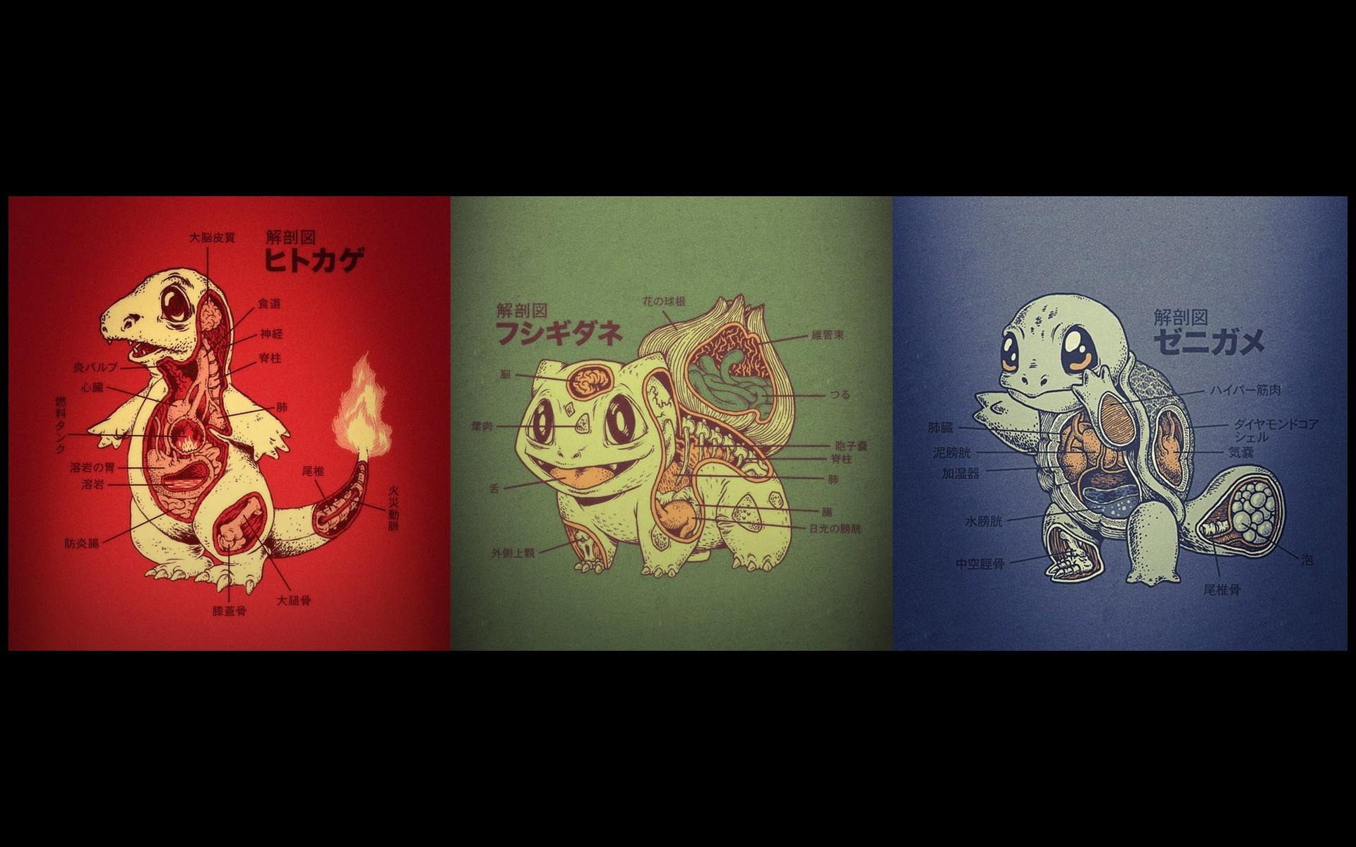 Fondos de pantalla : ilustración, texto, Pokemon, póster, marca ...