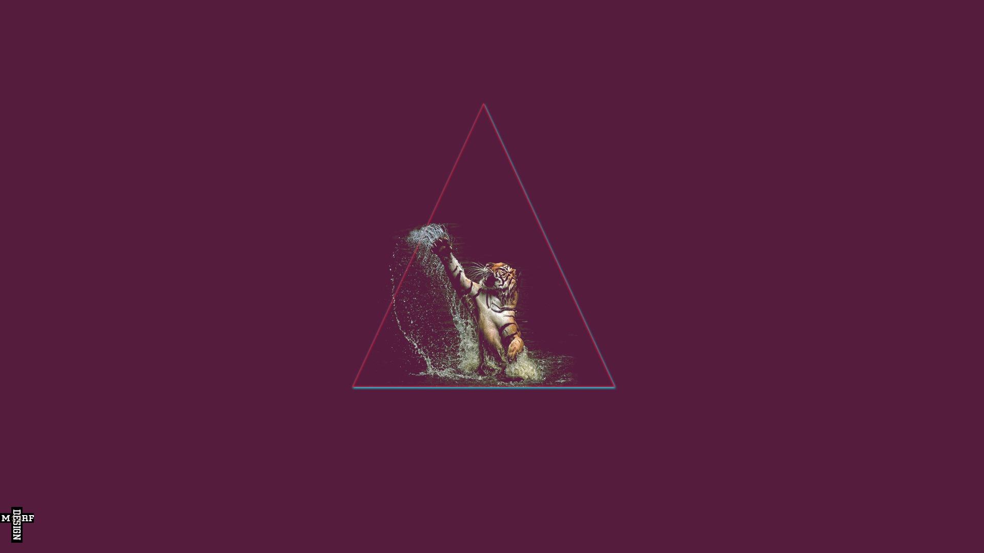 Illustration Tiger Triangle Shape Swag Screenshot Aggression