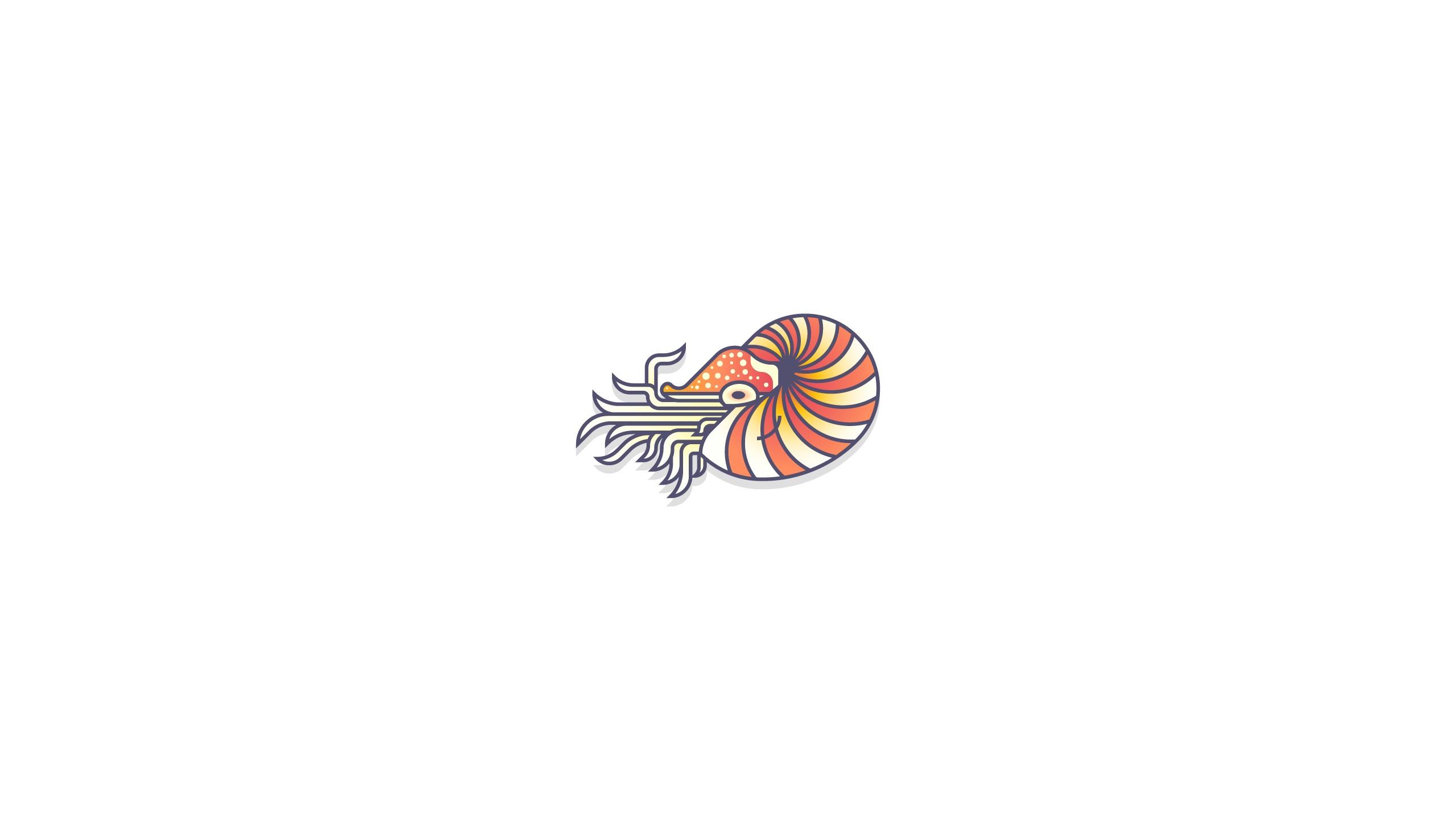 Fond Décran Illustration Fond Blanc Nautile