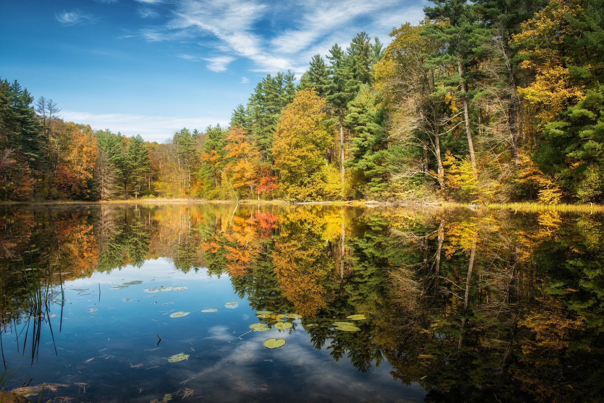 обои на рабочий стол осень природа река озеро лес № 241641  скачать