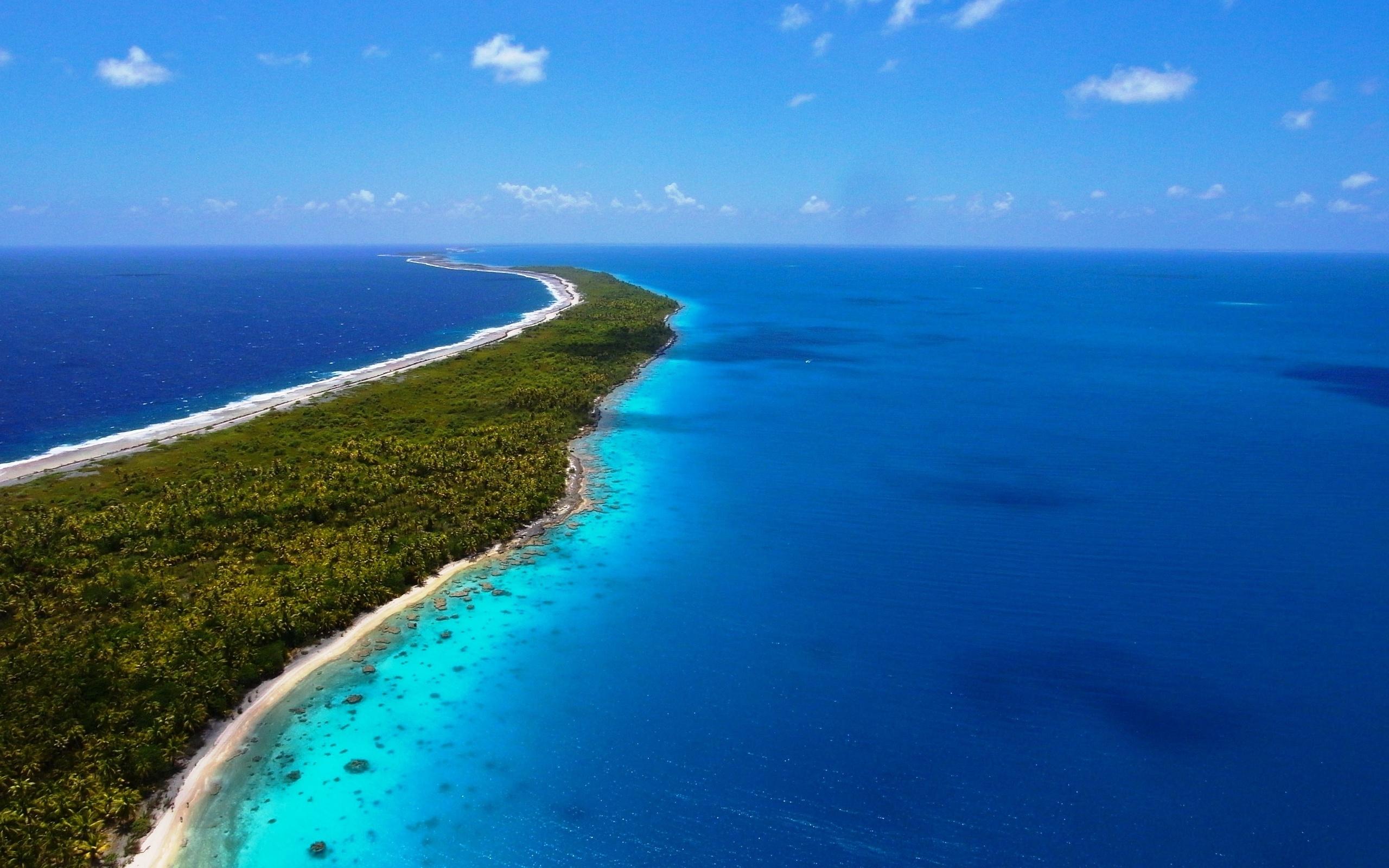 Sfondi Sbarcare Isola Mare Azzurro Palme Vegetazione