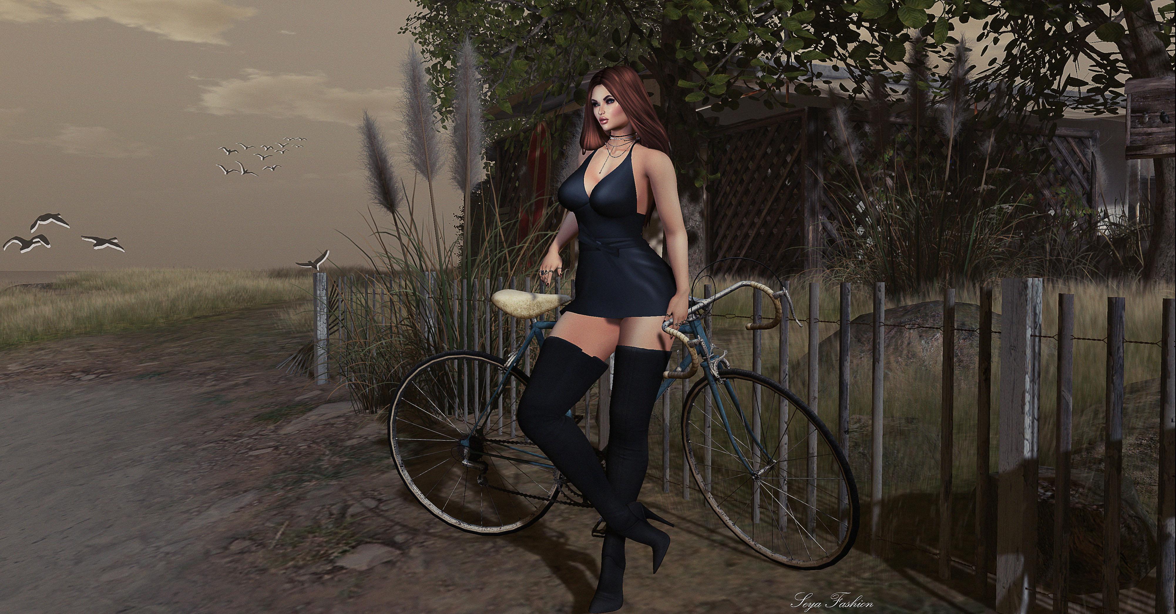 Wallpaper Land Vehicle Road Bicycle Cycling Tree Girl