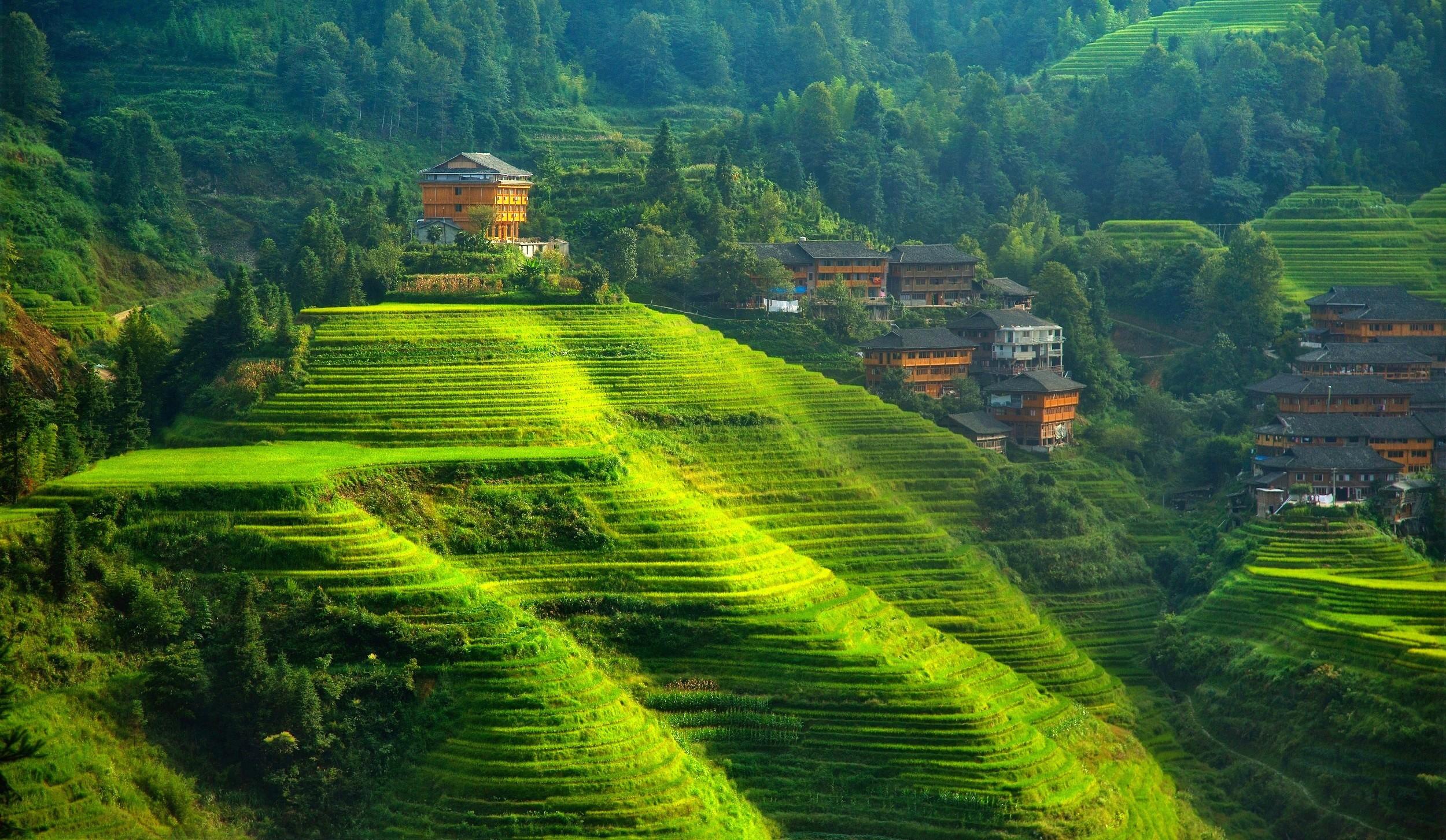 Fondos De Pantalla Paisaje China Colina Naturaleza