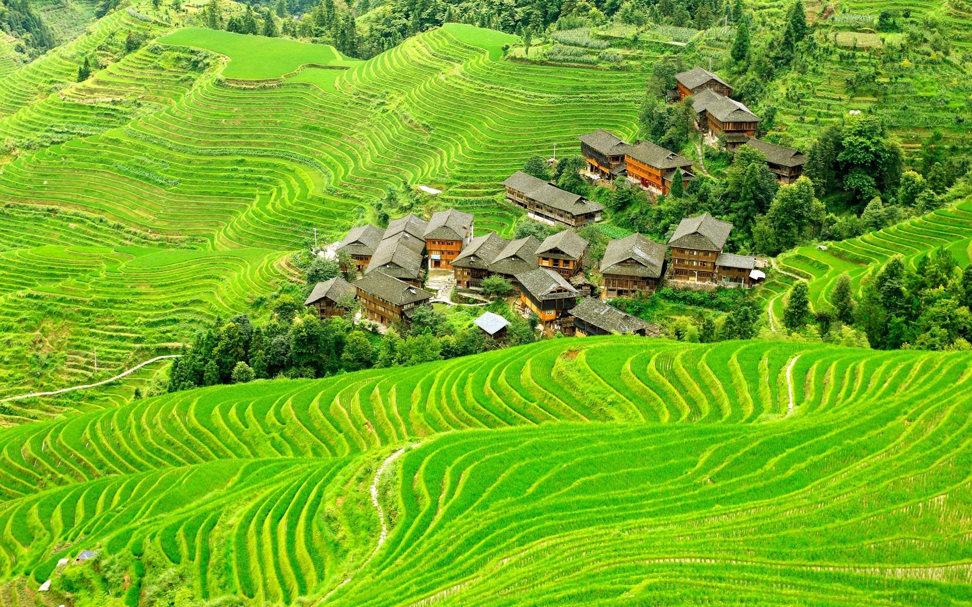 Fondos De Pantalla Paisaje China Naturaleza Verde