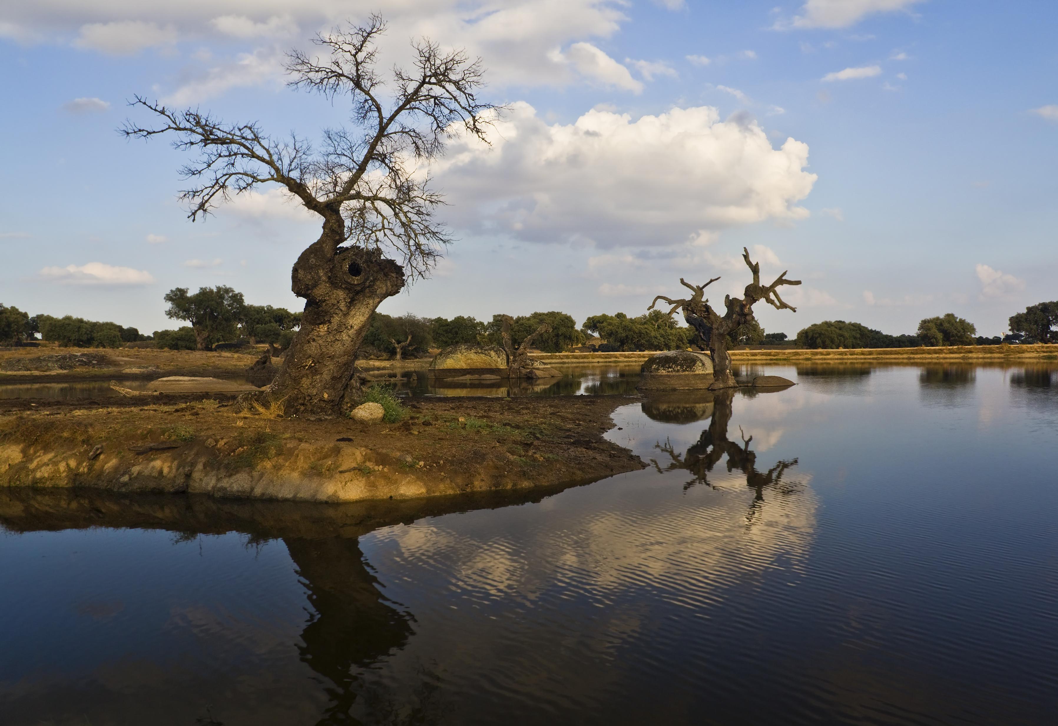 Wallpaper Landscape Photoshop Lake Nature Reflection