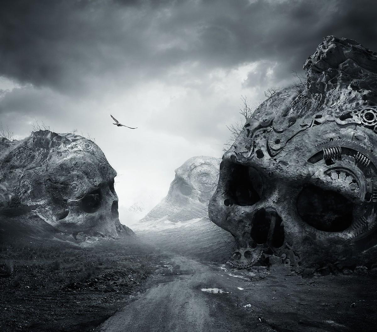 Wallpaper : landscape, birds, dark, rock, nature, snow ...
