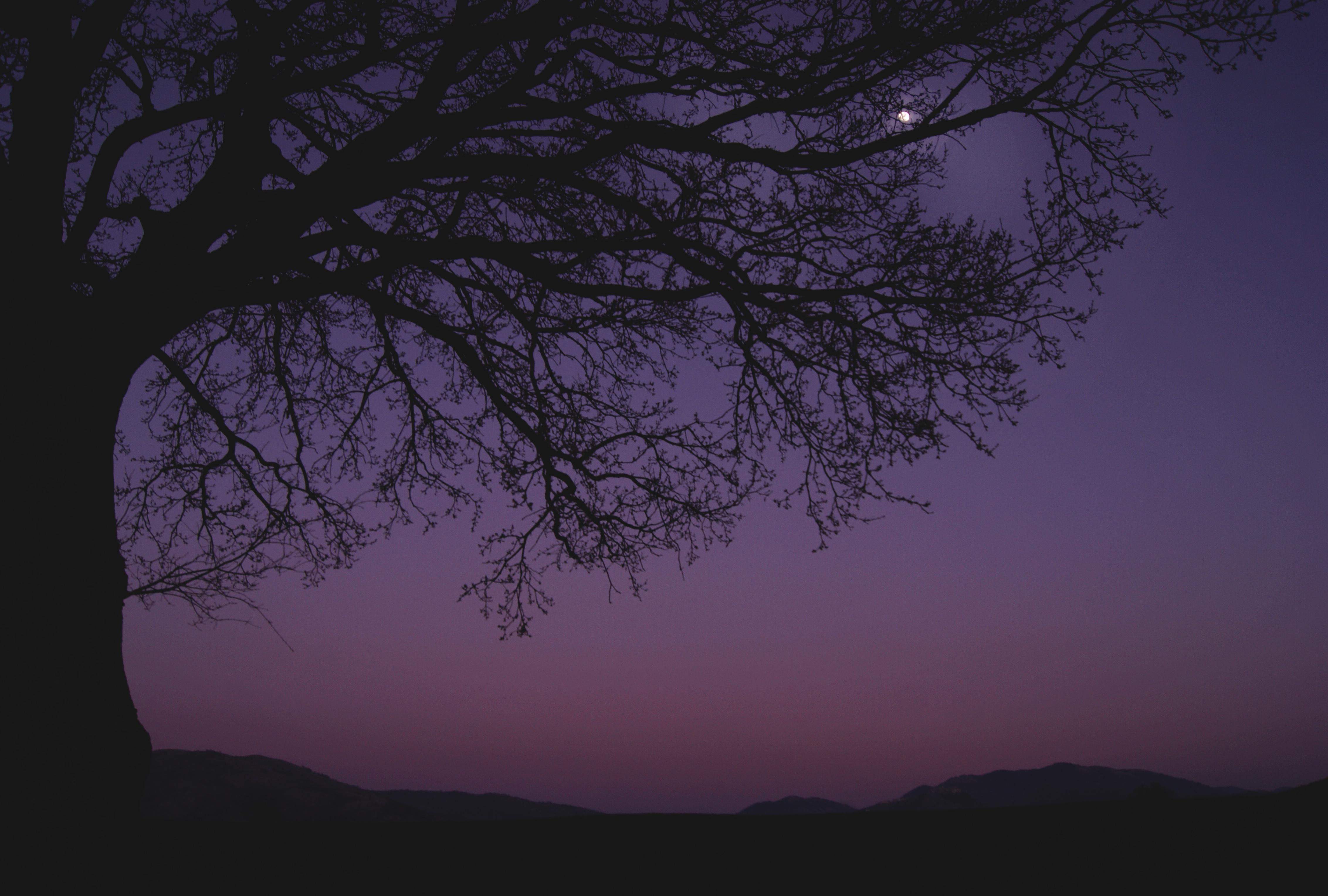 Обои atmosphere, violet, colors. Космос foto 15