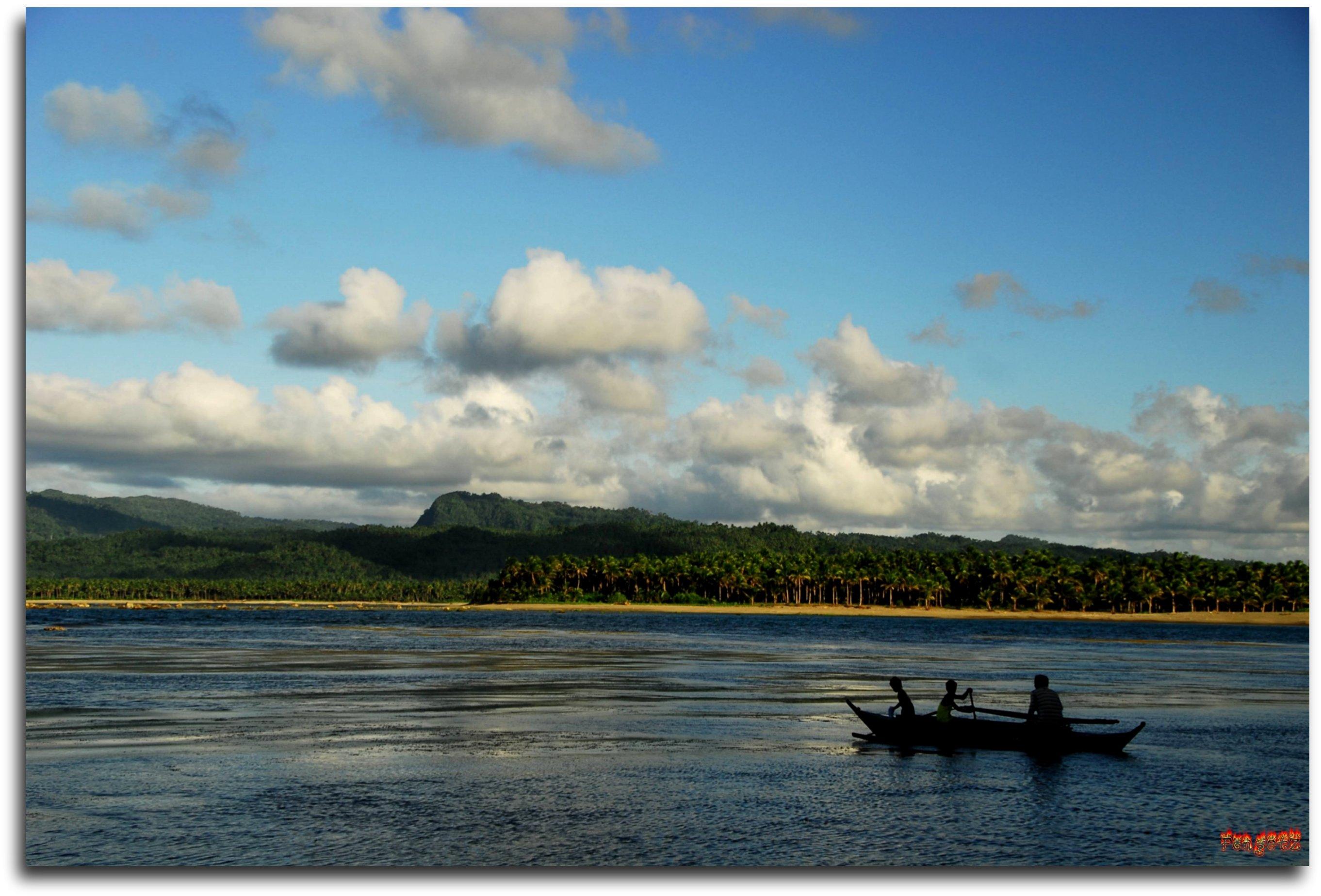 560+ Gambar Pemandangan Ikan Di Laut Gratis Terbaik