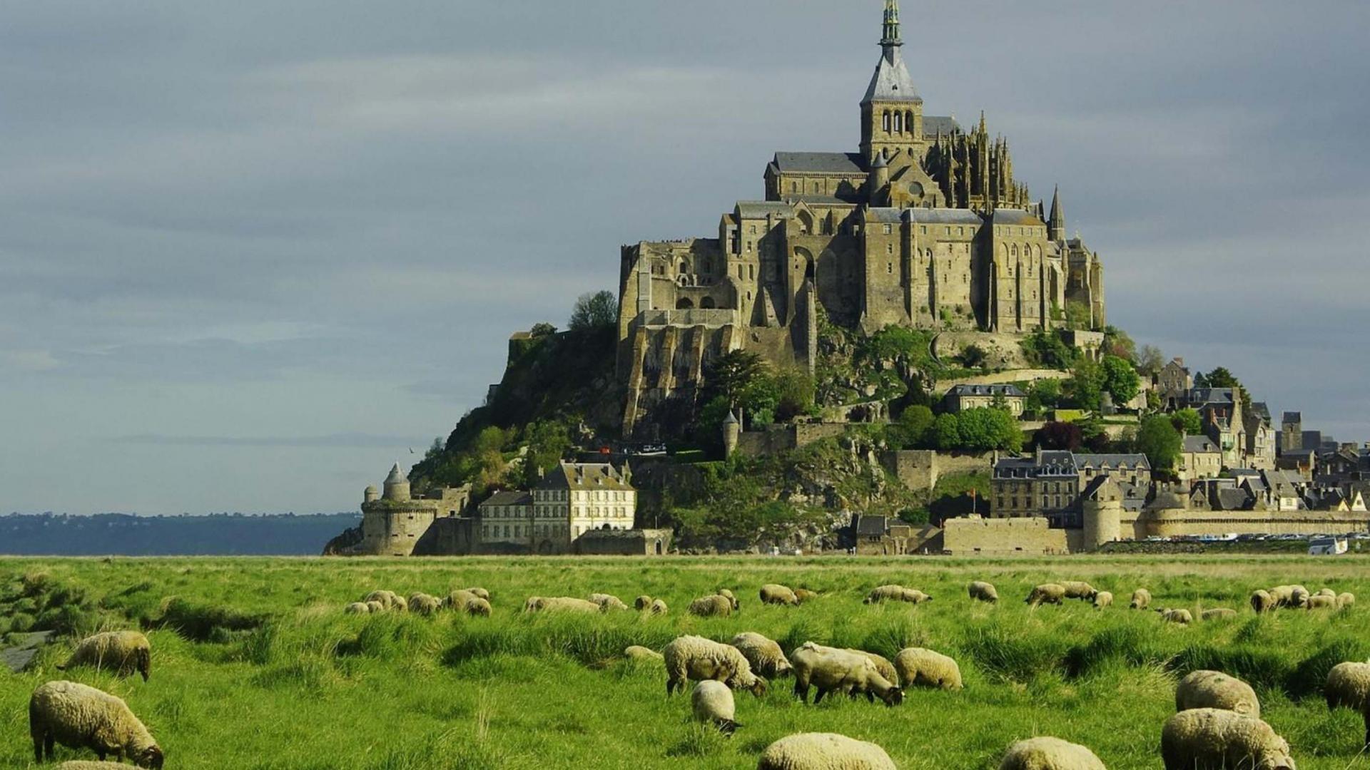 デスクトップ壁紙 : 風景, モンサンミッシェル, 城, 平野, フランス, 古い建物, 羊, 史跡, 礼拝の場 1920x1080