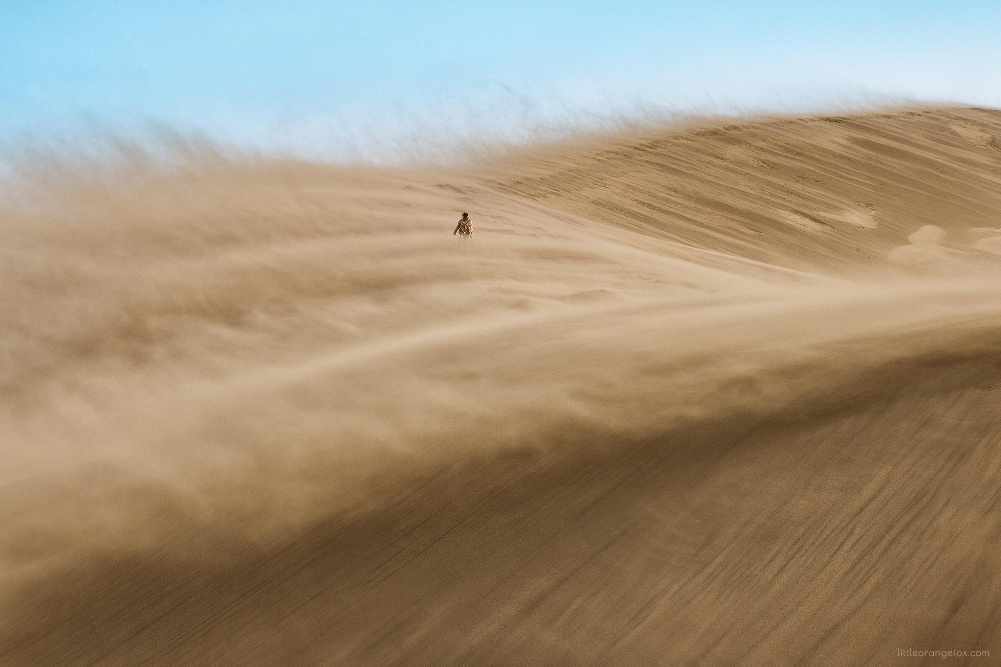 имеет картинки ветров в пустыни учесть нюансы планировки