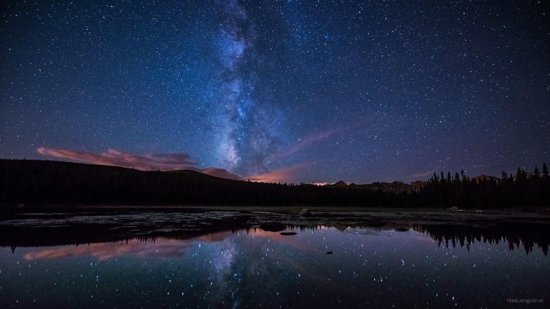 Фото обои ночное звездное небо и природа