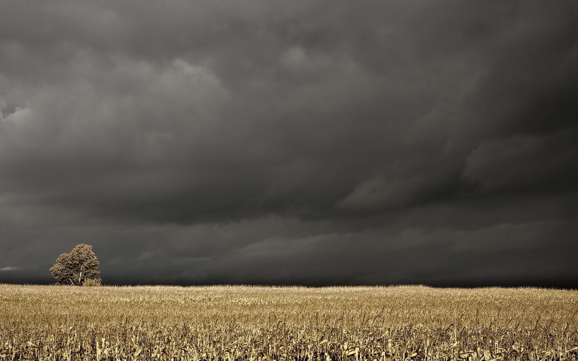 человека есть картинки на телефон пасмурная погода самый