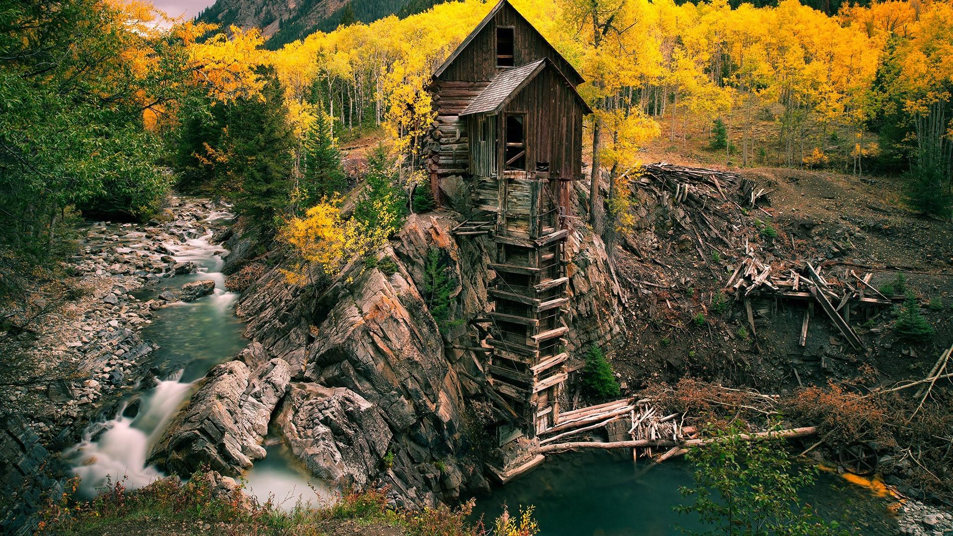 Wallpaper : landscape, forest, garden, nature, reflection, field ...