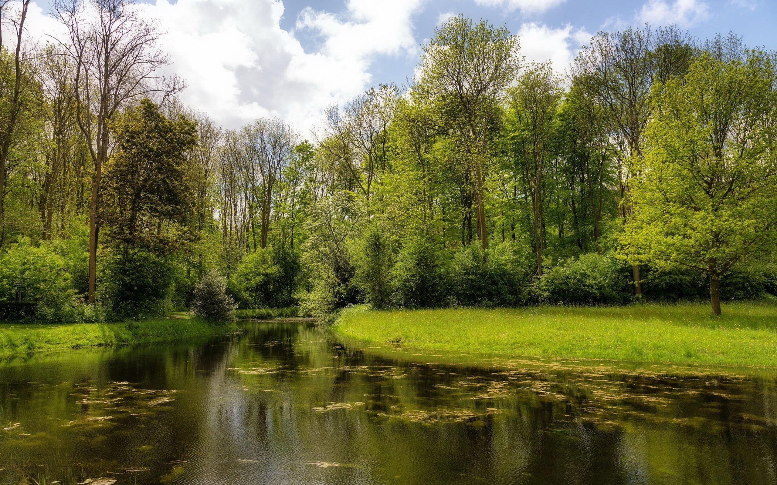 обои на рабочий стол осень природа река озеро лес № 241637 без смс