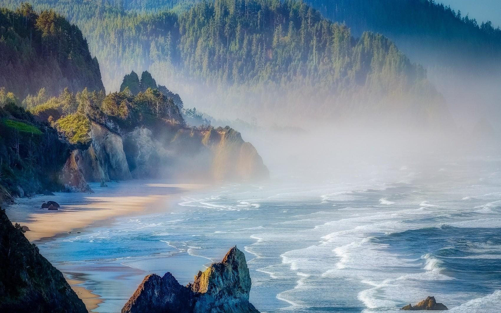 красивые картинка горы лес океан производства упаковки