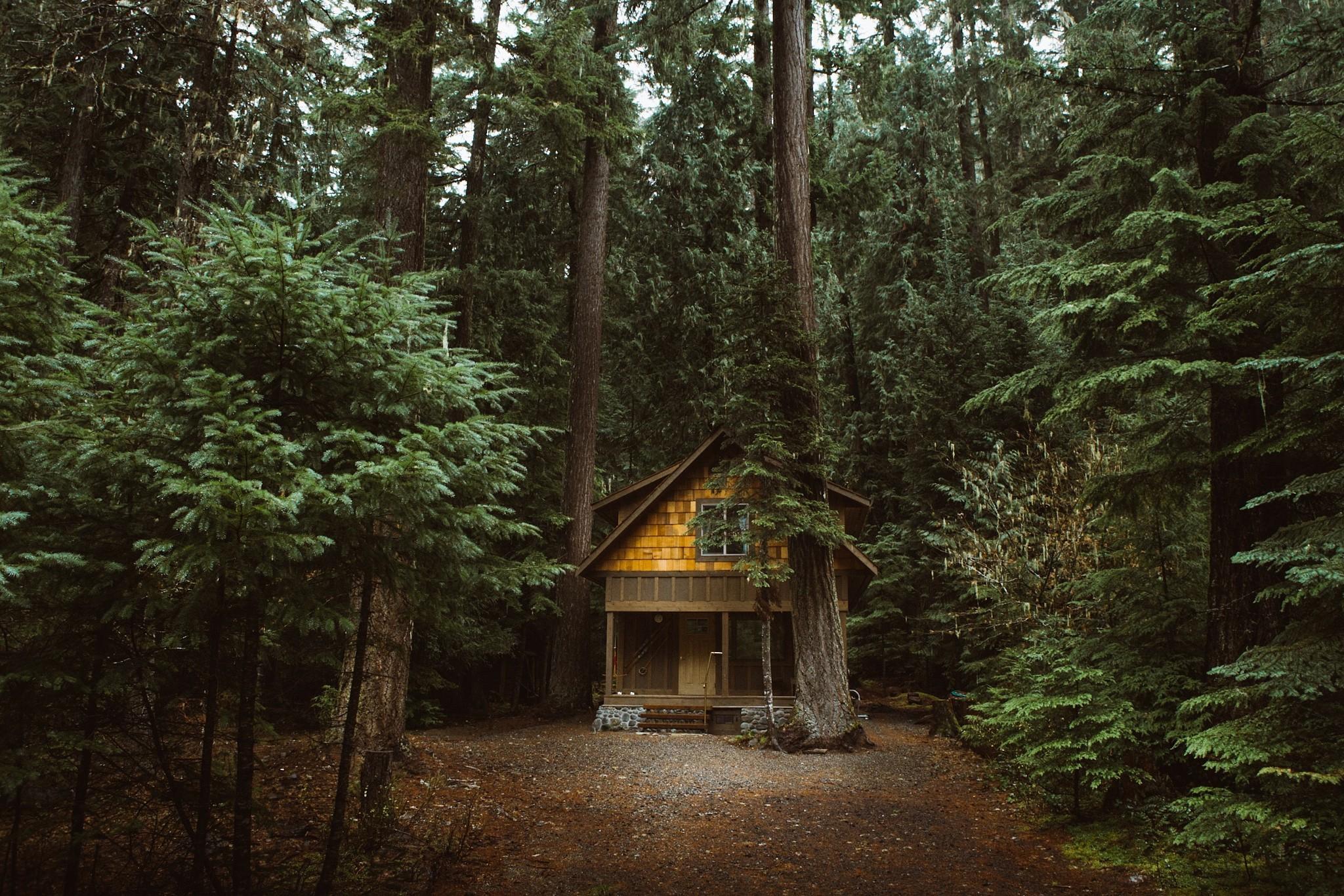 дом на окраине леса картинки ученичества любом деле