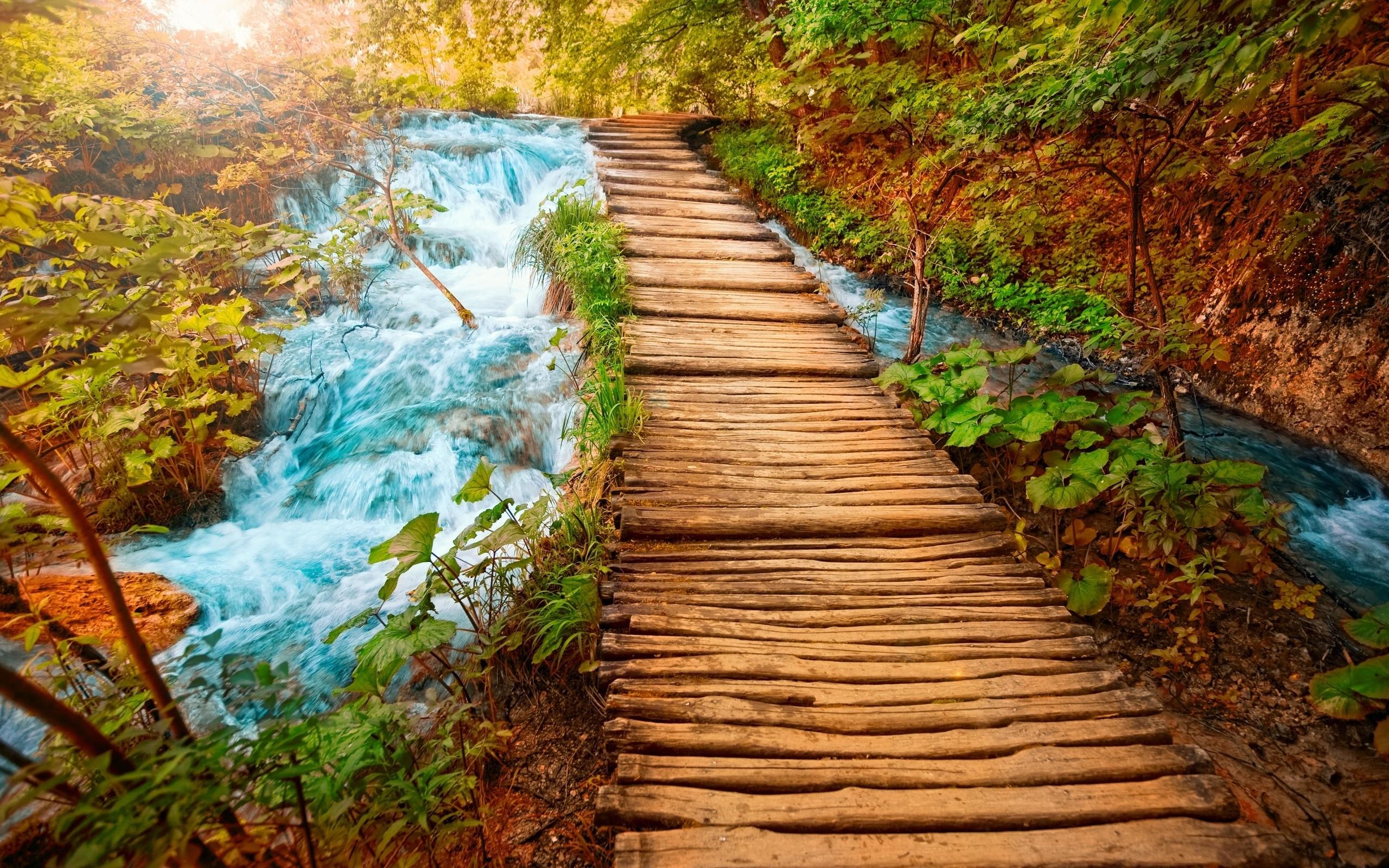 Яркие пейзажи природы картинки